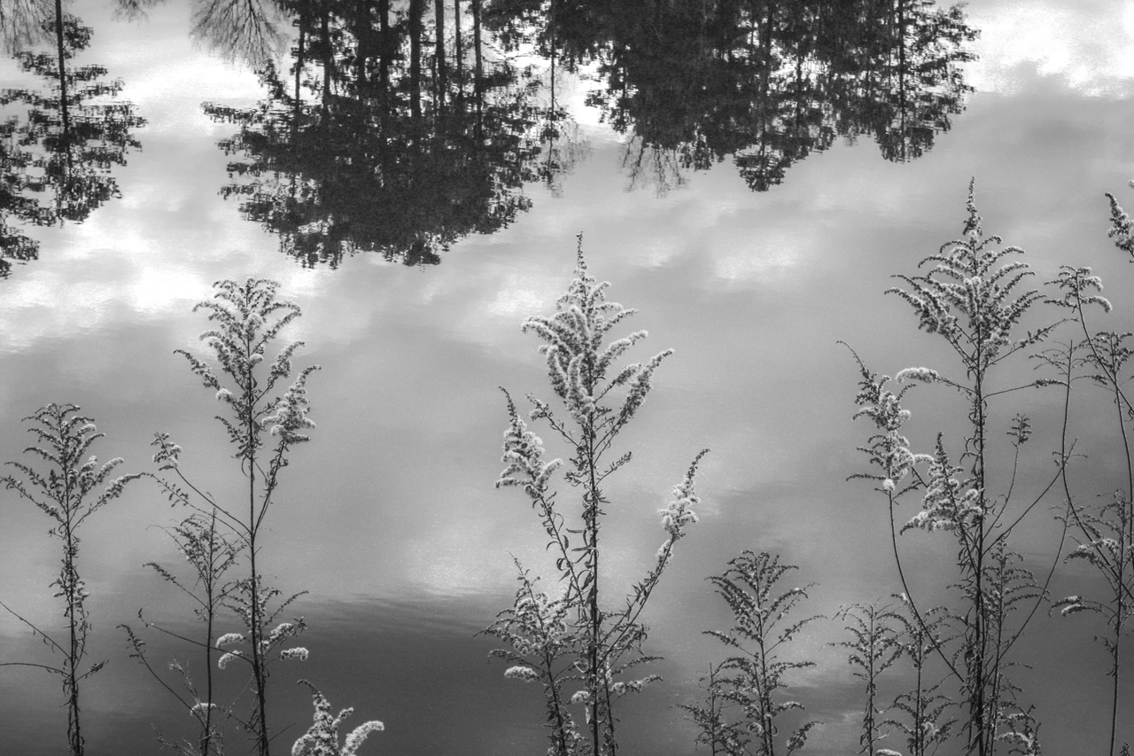 alexander_reflection.JPG