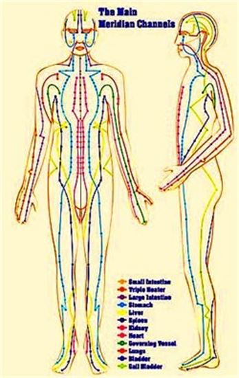 THE MAIN MERIDIAN CHANNELS  Small Intestine, Triple Heater, Large Intestine, Stomach, Liver, Spleen, Kidney, Heart, Governing Vessel, Lungs, Bladder, Gall Bladder