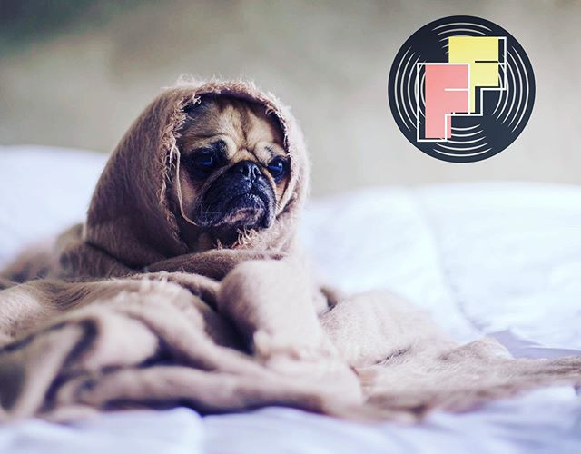 Don't have FOMO this weekend! You can still enter your pup in the Farnam Festival 2019 Amateur Dog Show!  Check in at 10:00 by the stage // Show starts at 11AM 🐾
