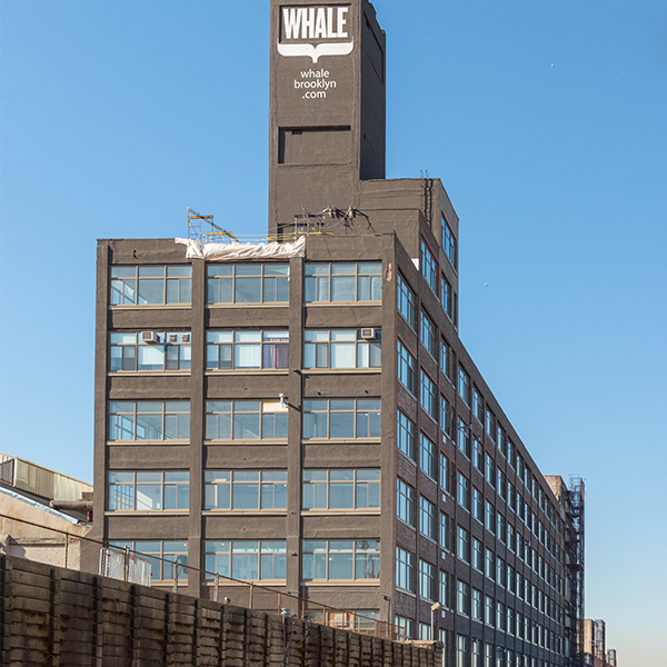 The Whale Building -