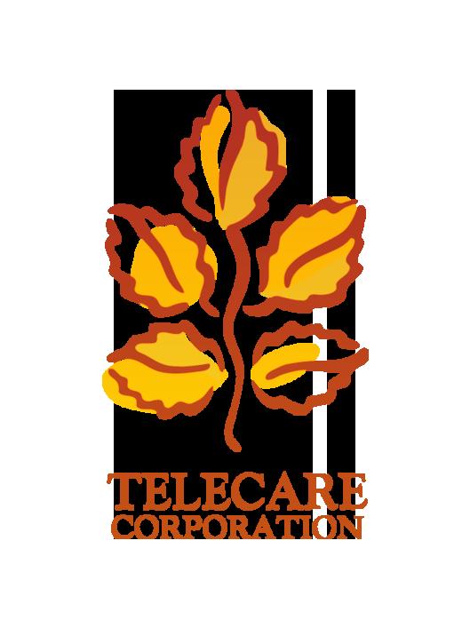 Telecare B orange.png