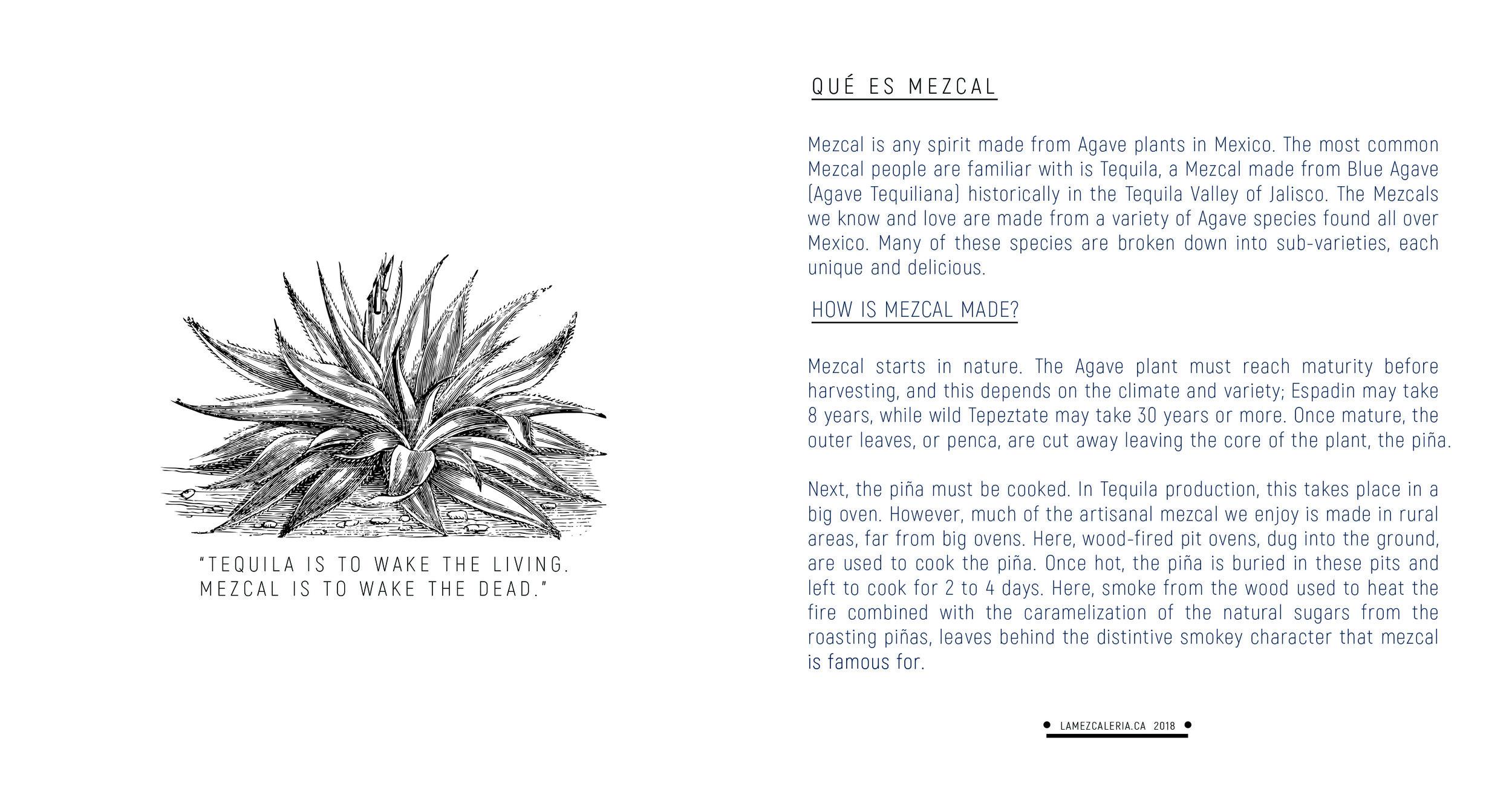 booklet-final1.jpg