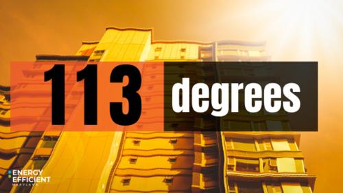 113 Degree Blog and Social Image.png