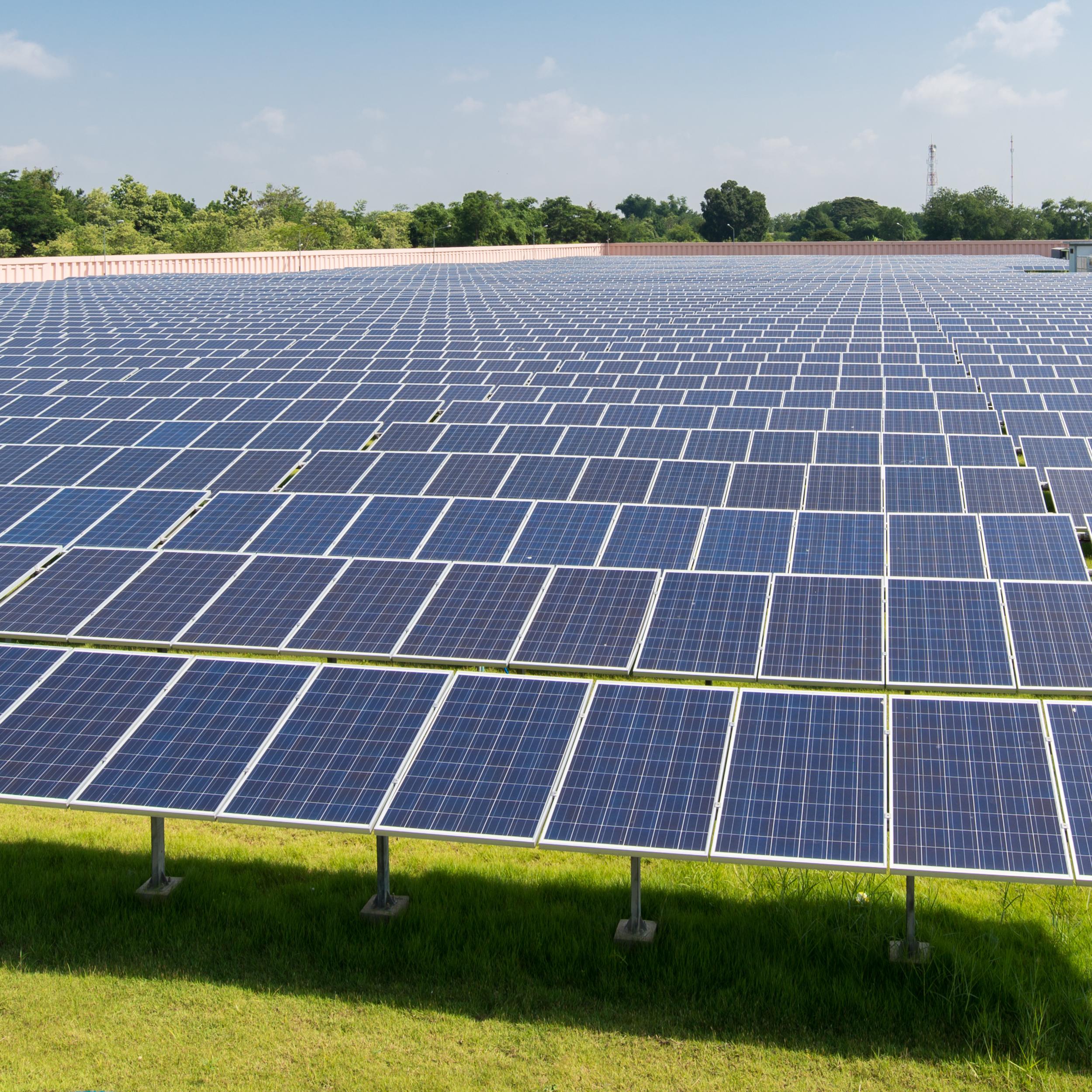 solar-field-1x1.png