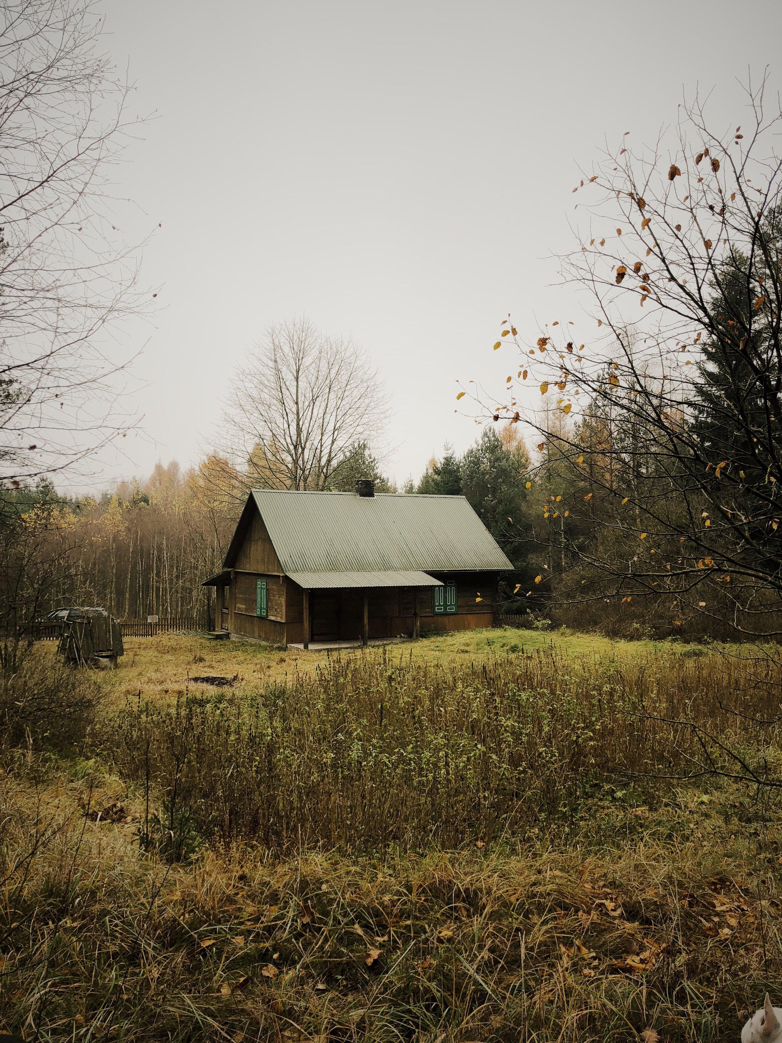 Widok na dom z lasu.