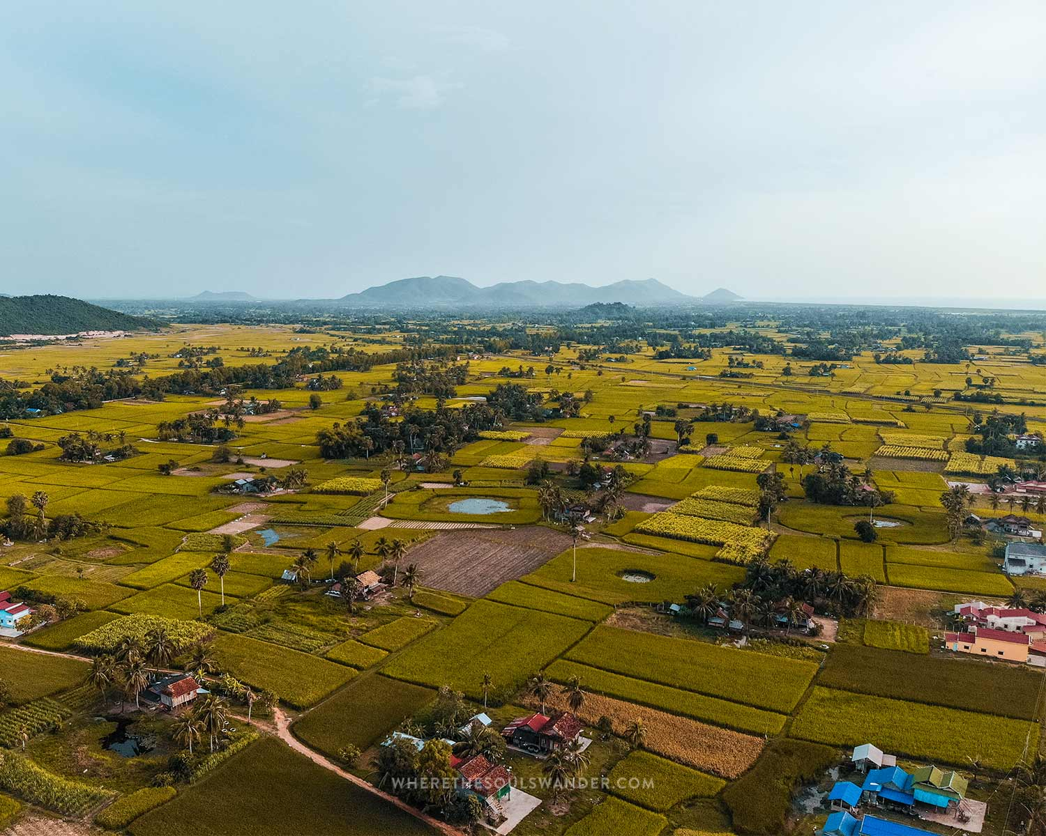 The countryside between Kampot and Kep looks stunning with all their ricefields.