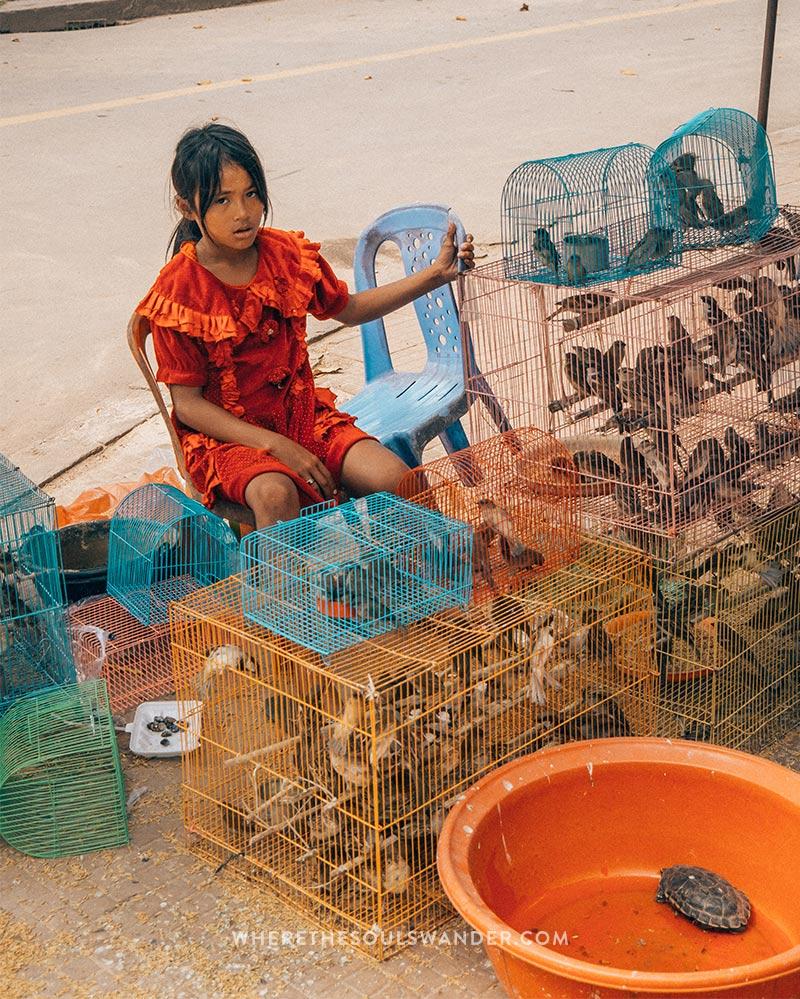 Little girl selling birds in the streets of Siem Reap