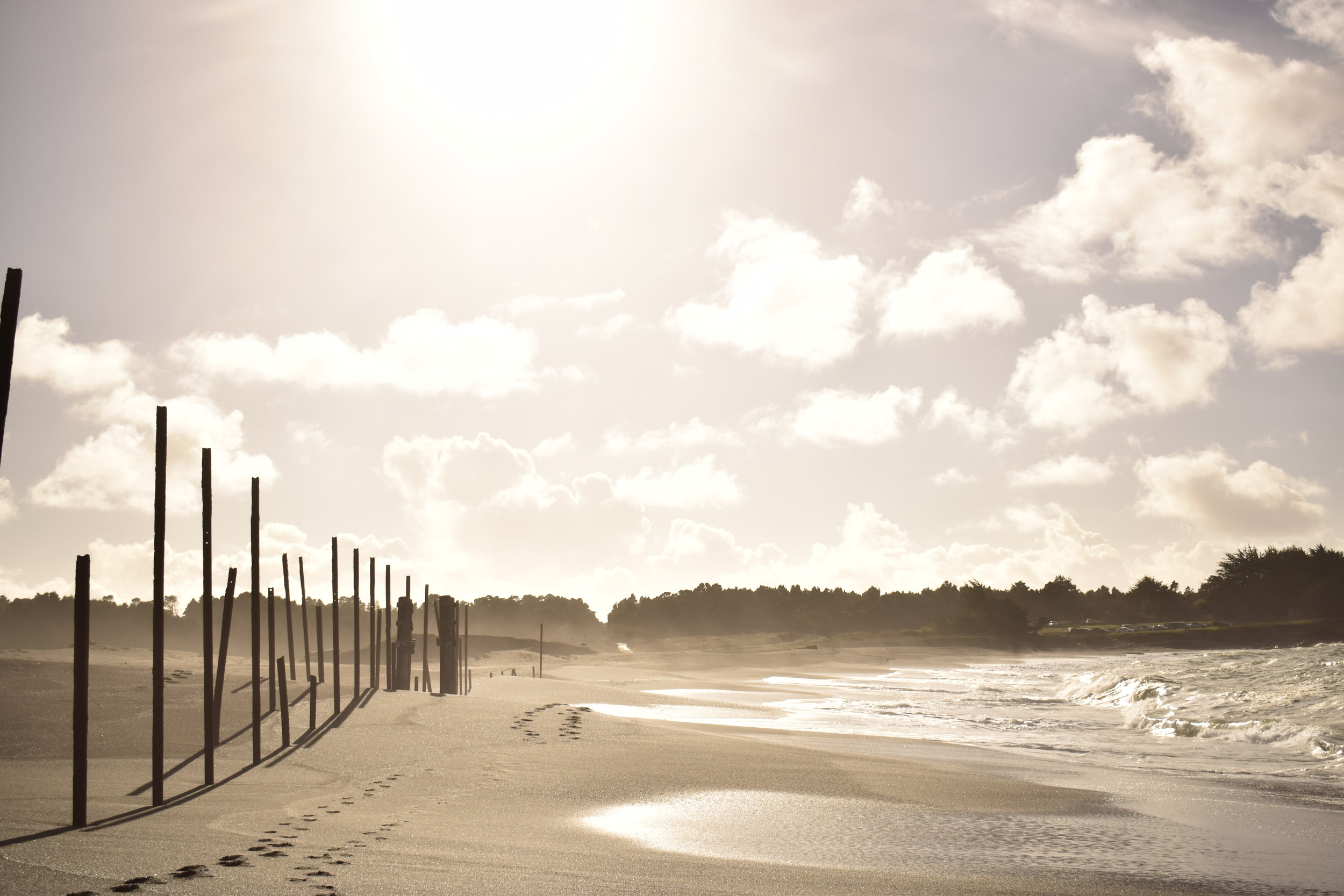 Mendocino Beach with Posts.Sun.JPG