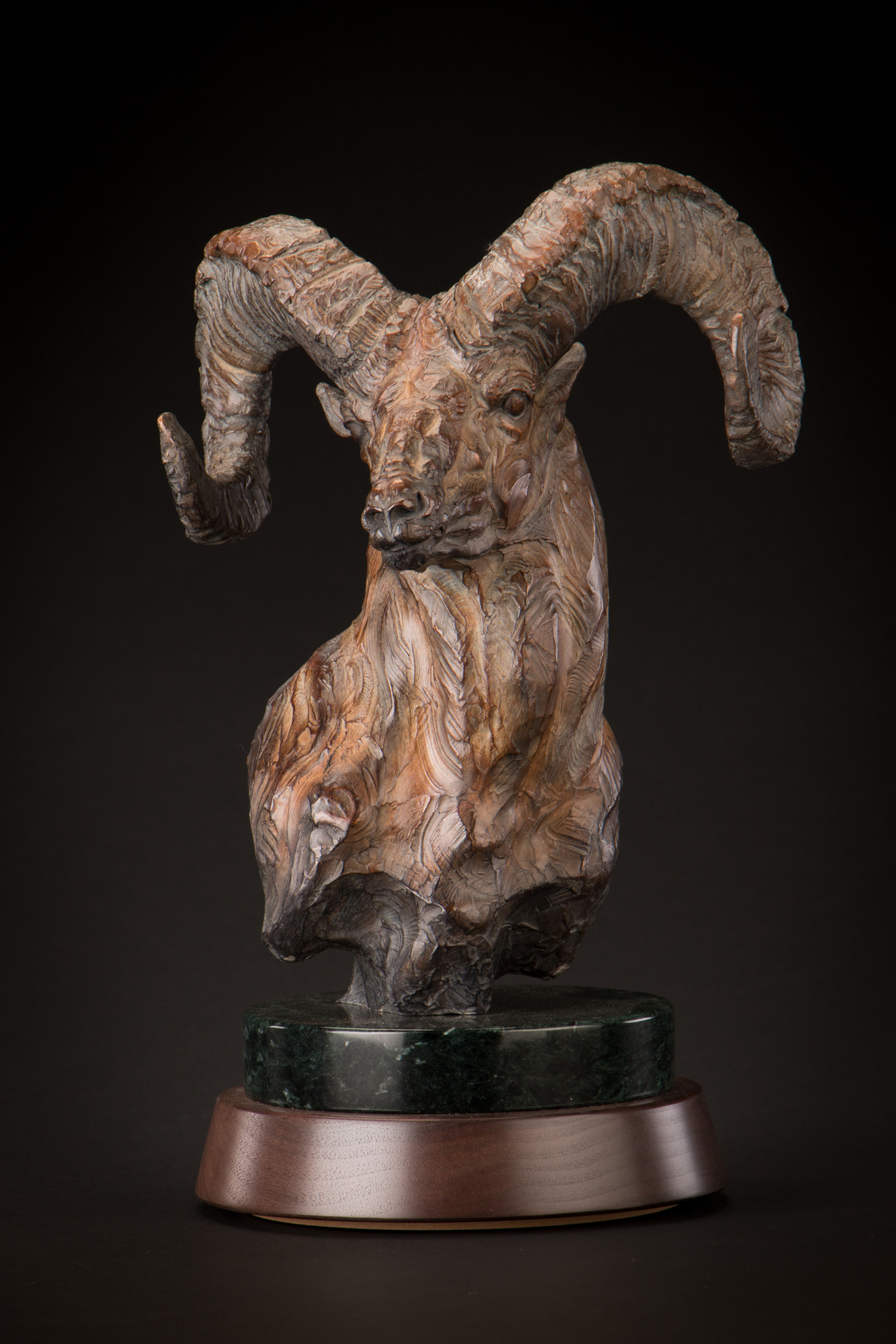 "Highborn | 15"" x 9"" x 7.75"" | Bronze | Edition of 35 | $2,600"