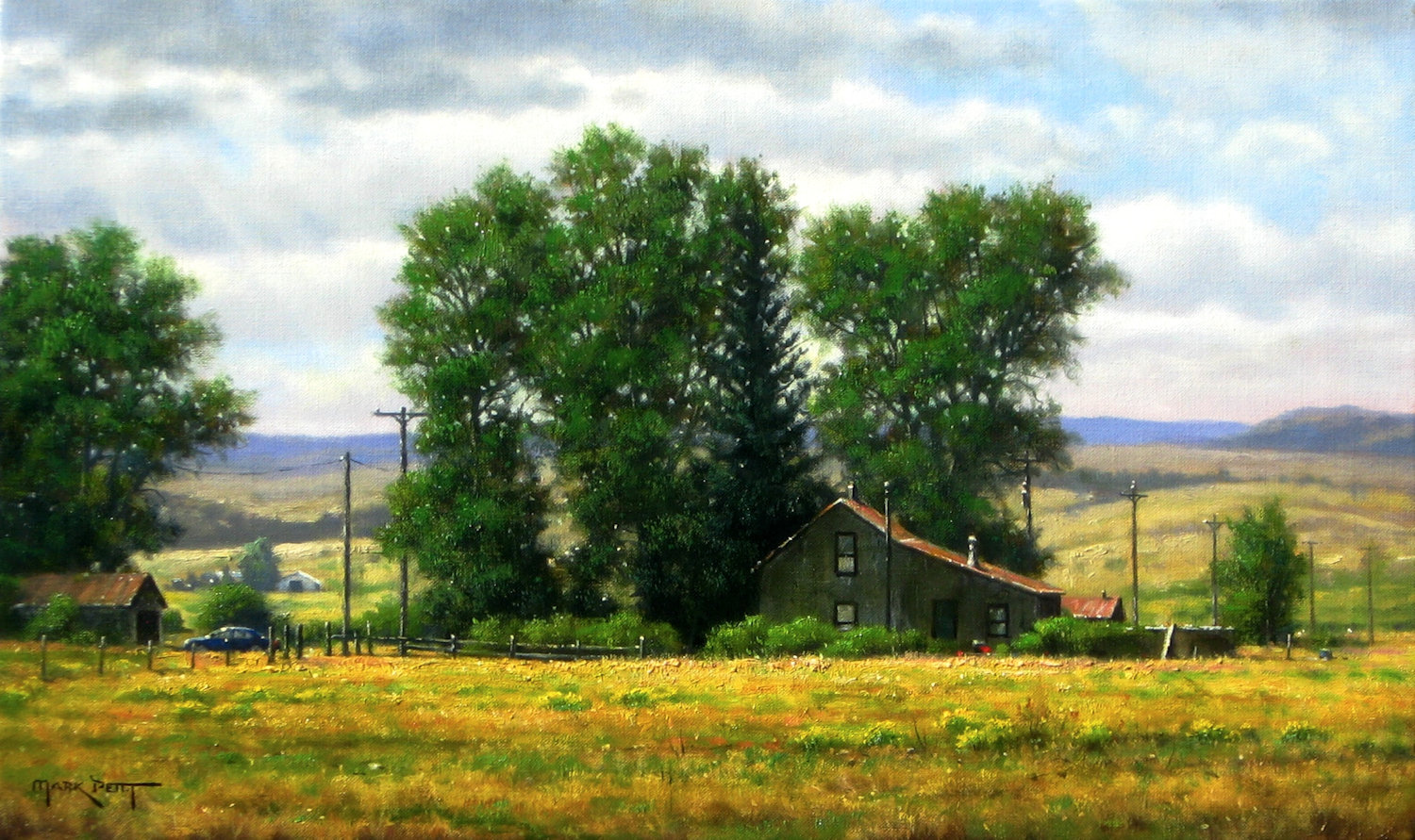 "Late Summer Light | 12"" x 20"" 