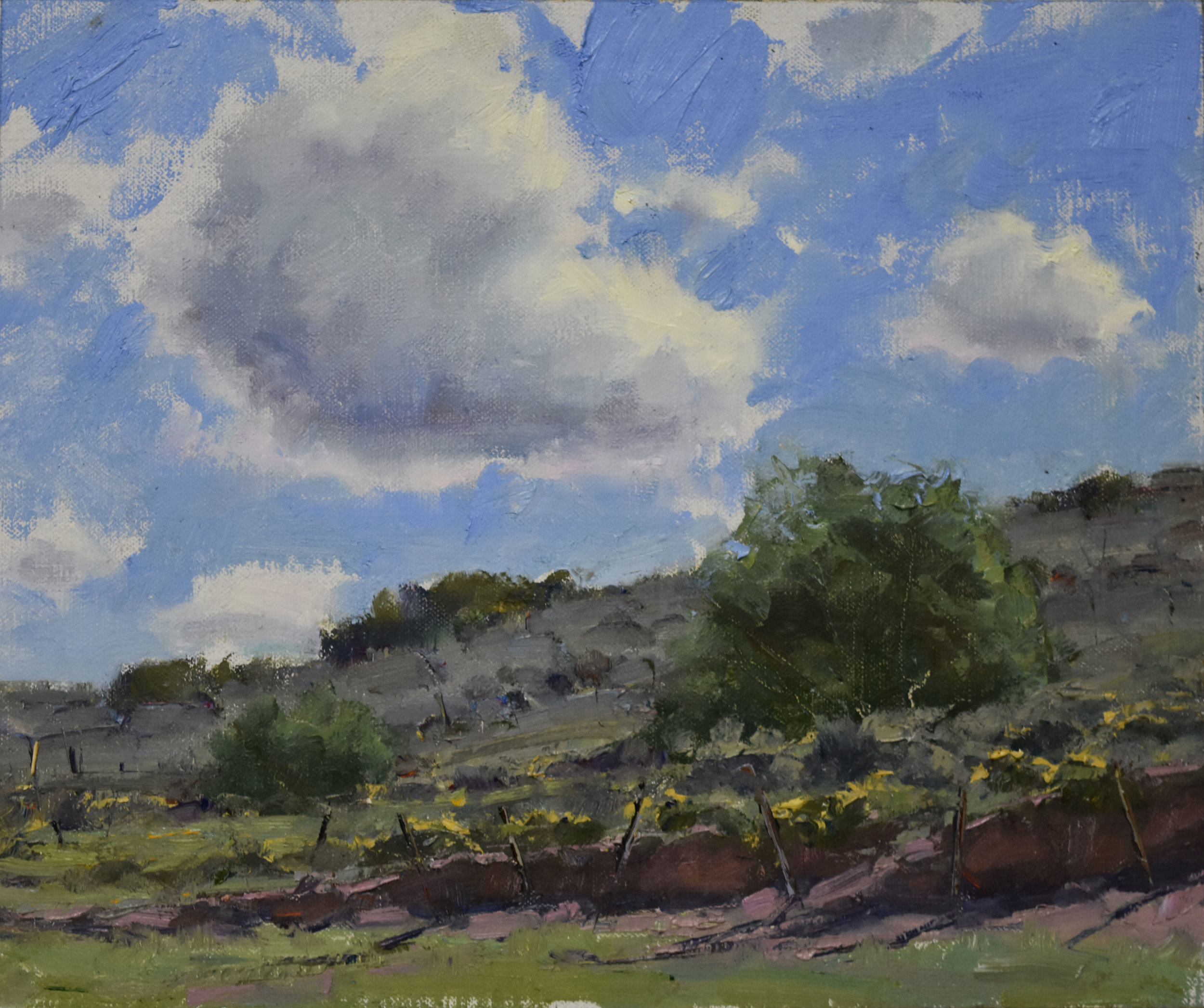 "Summer Clouds | 10"" x 12"" | Oil | $1,900"