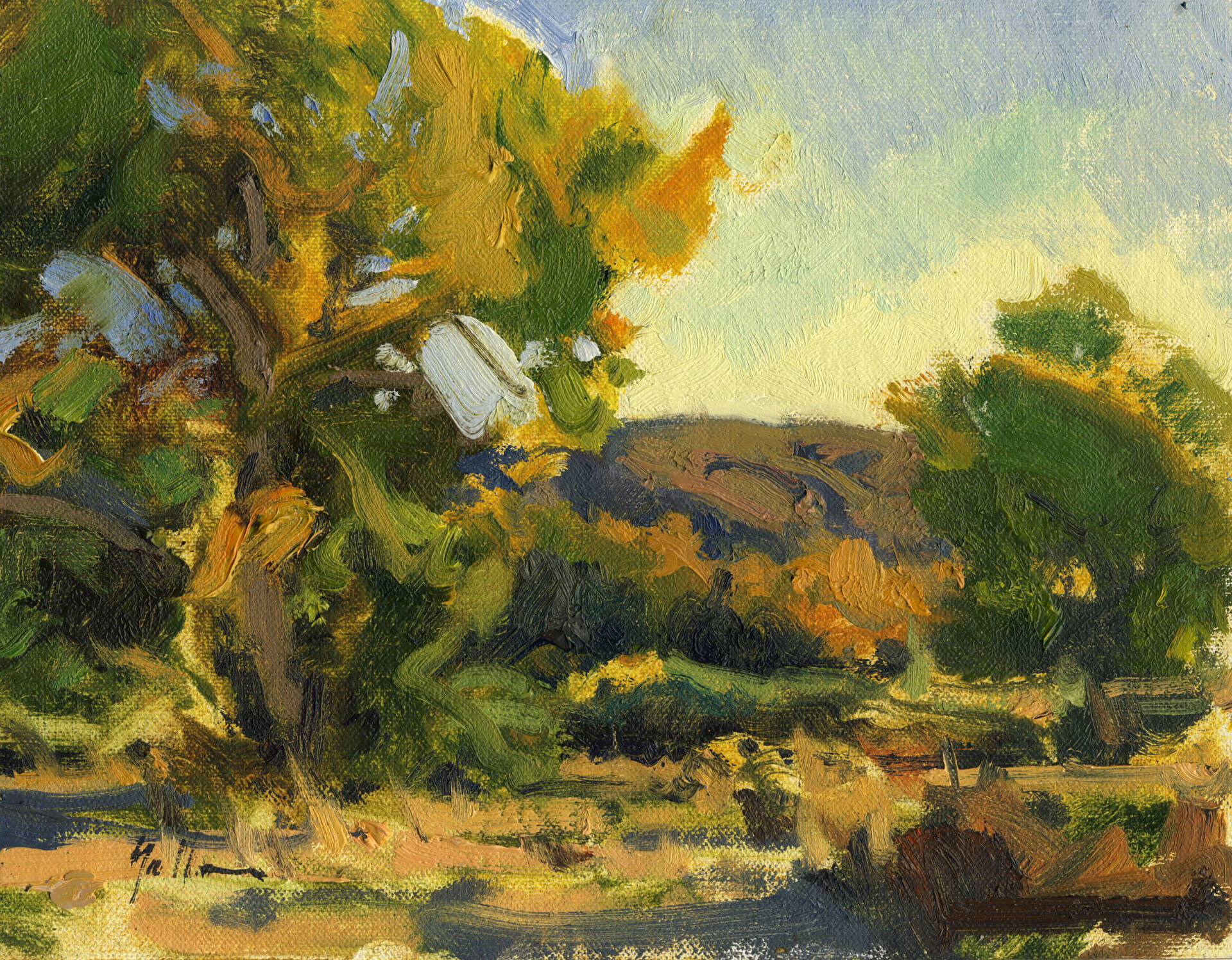 """Bosque Afternoon 