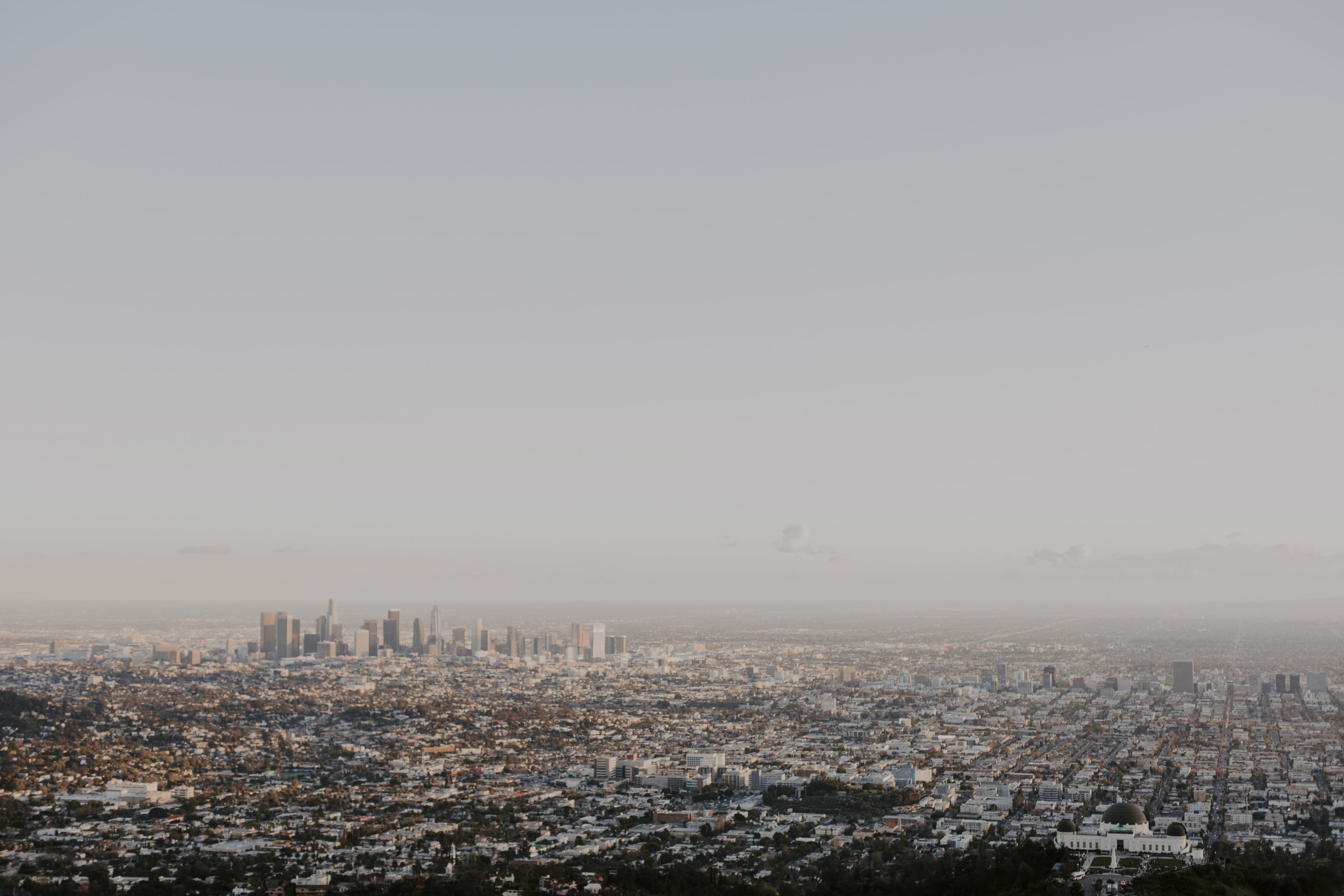 la city 2.jpg