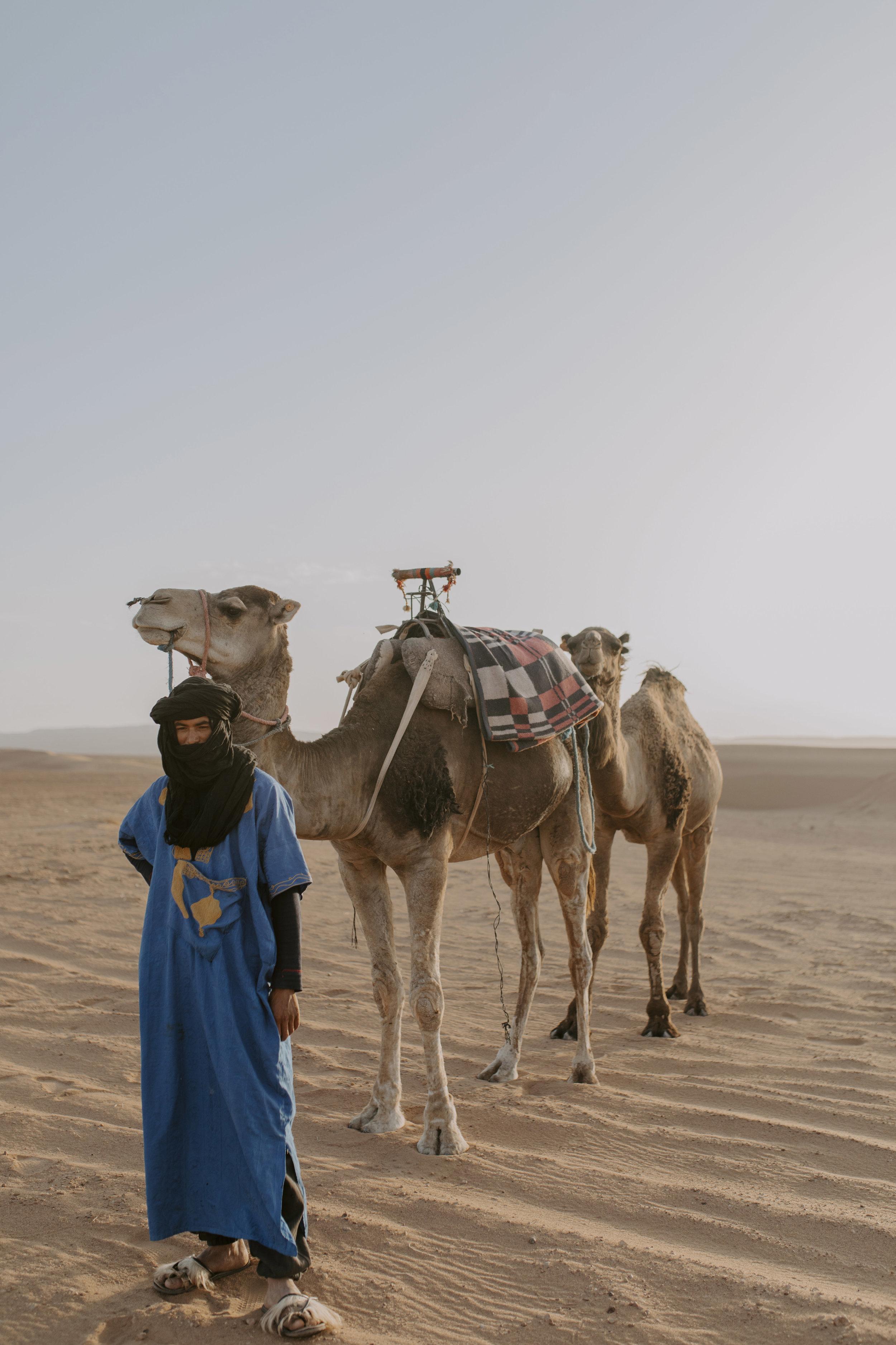 desert 48.jpg