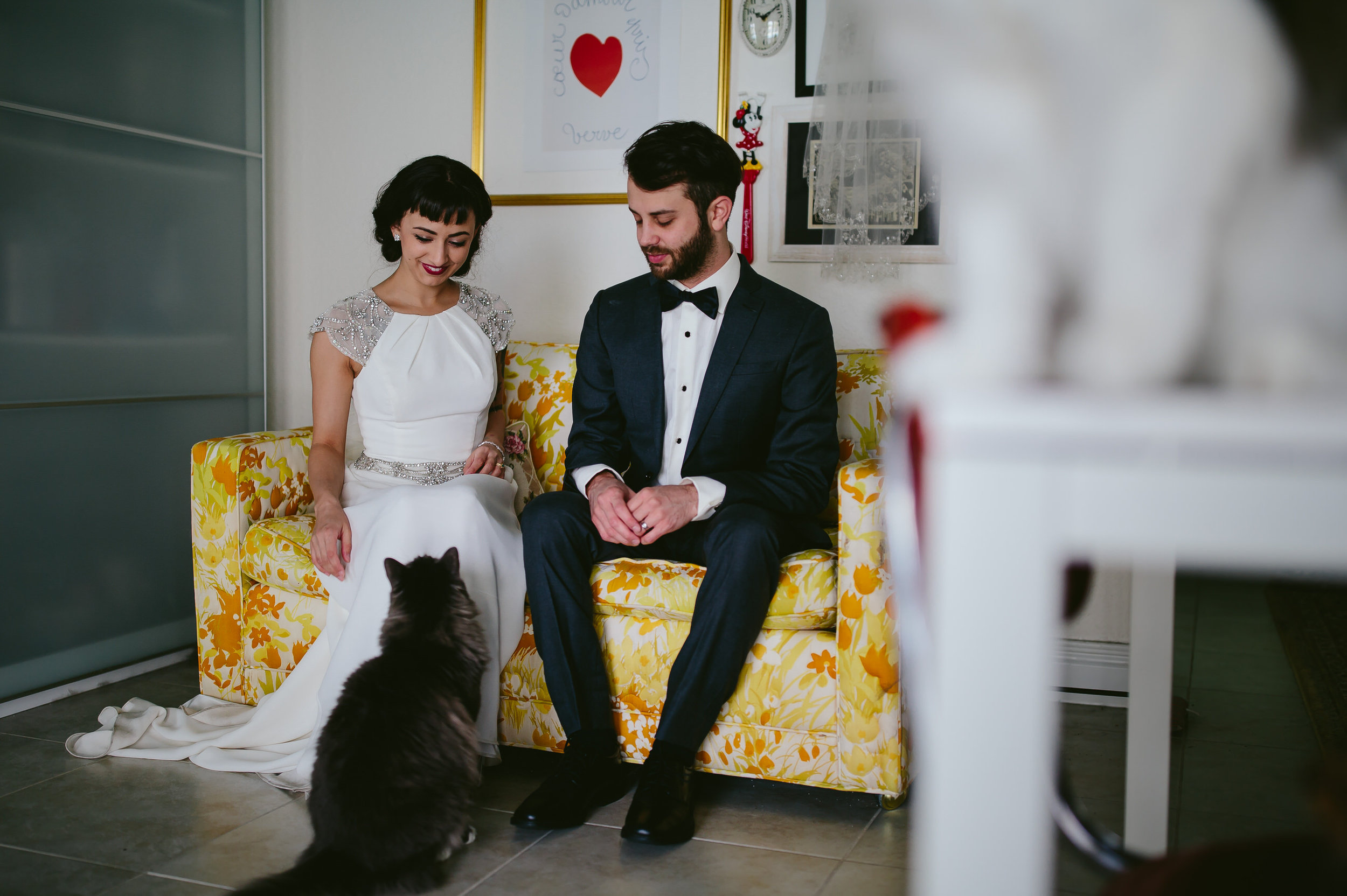 bride_and_groom_cats_in_home_session_wedding_fort_lauderdale_photographer_steph_lynn_photo-10.jpg