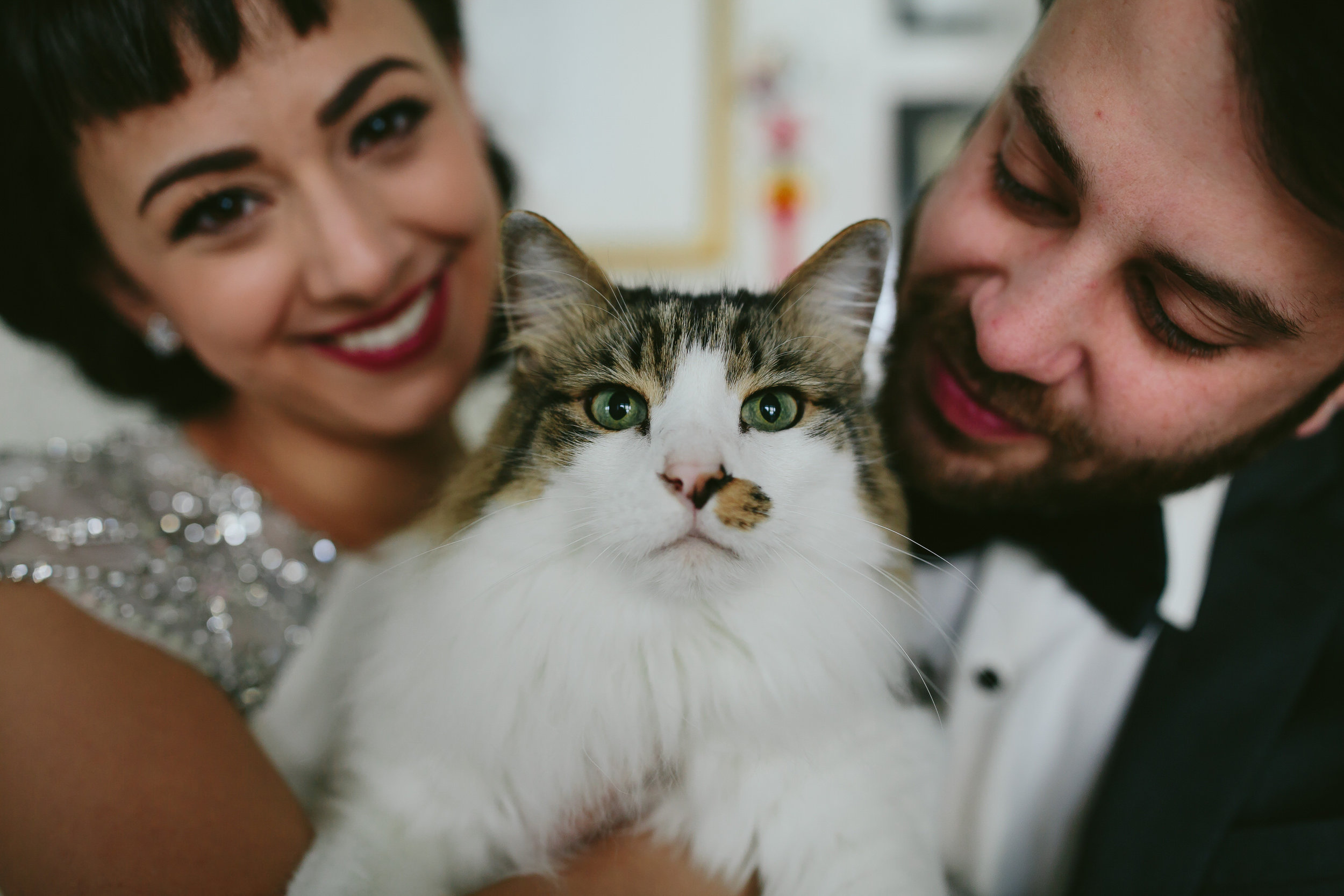 bride_and_groom_cats_in_home_session_wedding_fort_lauderdale_photographer_steph_lynn_photo-68.jpg