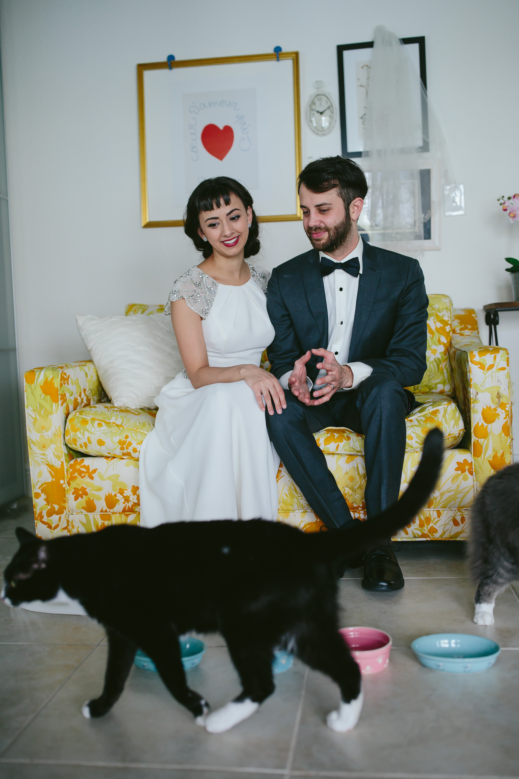 bride_and_groom_cats_in_home_session_wedding_fort_lauderdale_photographer_steph_lynn_photo-71.jpg