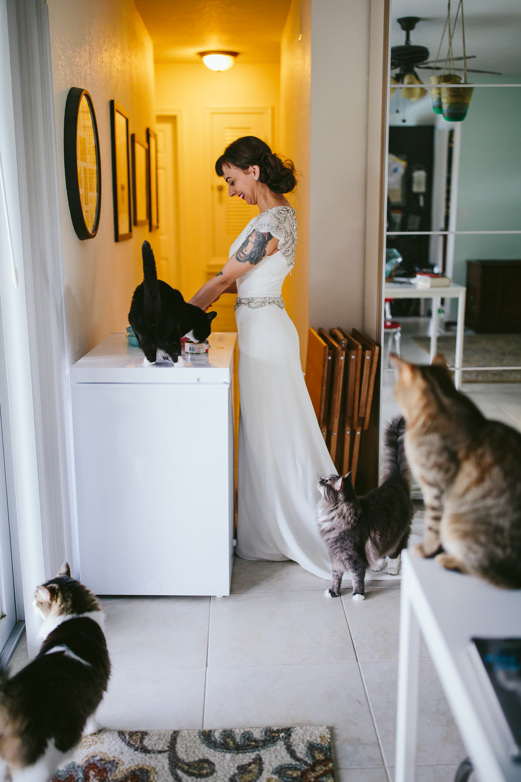 bride_and_groom_cats_in_home_session_wedding_fort_lauderdale_photographer_steph_lynn_photo-90.jpg