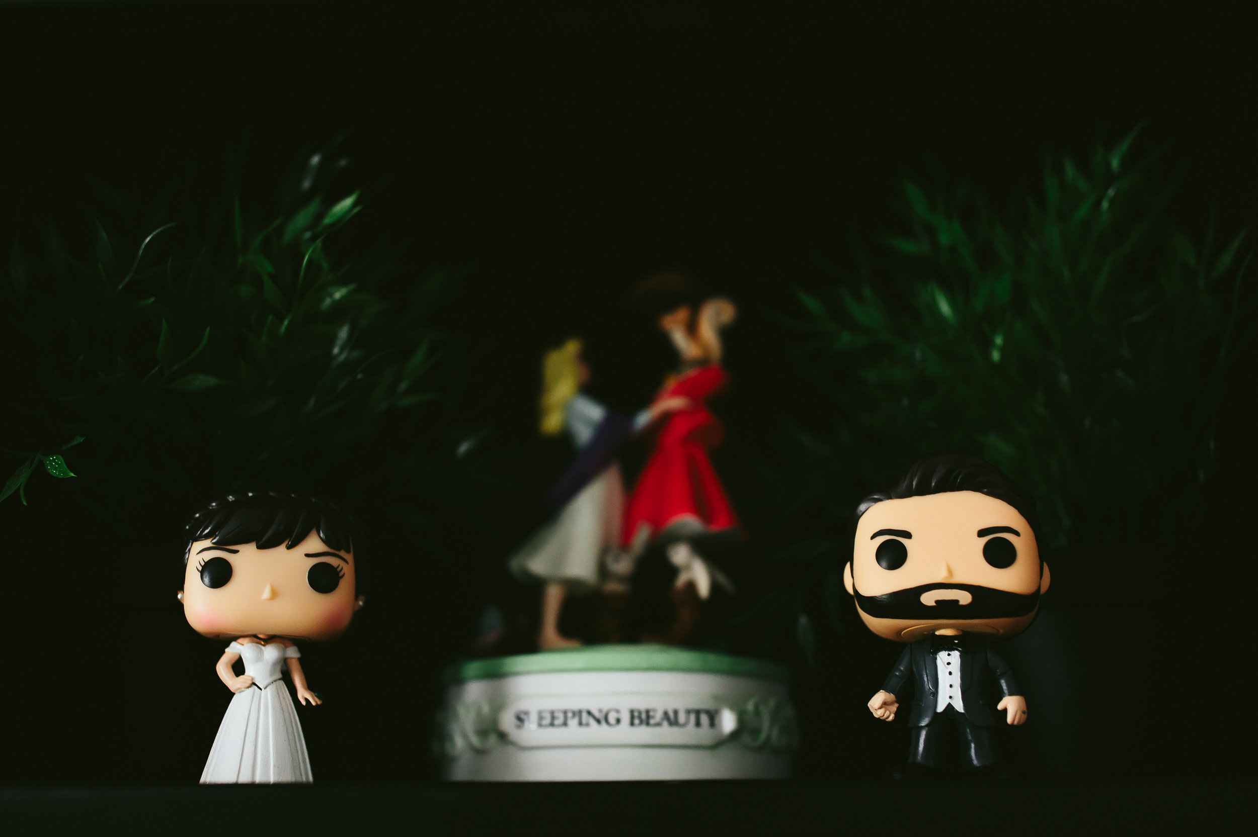 bride_and_groom_cats_in_home_session_wedding_fort_lauderdale_photographer_steph_lynn_photo-155.jpg