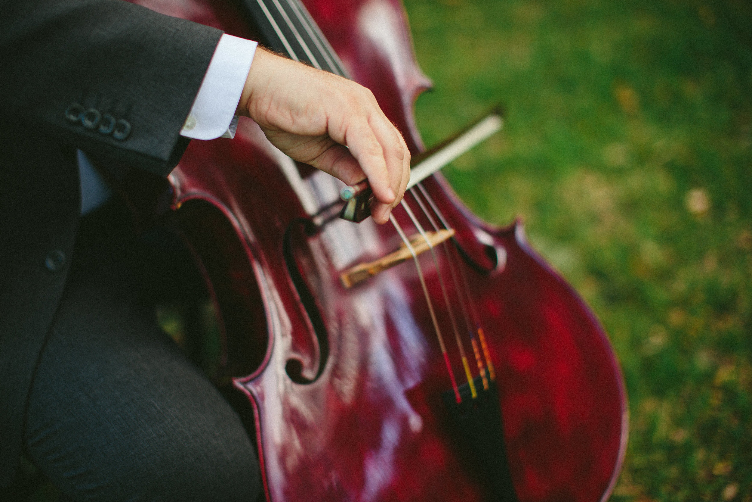 violin-music-instrument-wedding-tiny-house-photo.jpg