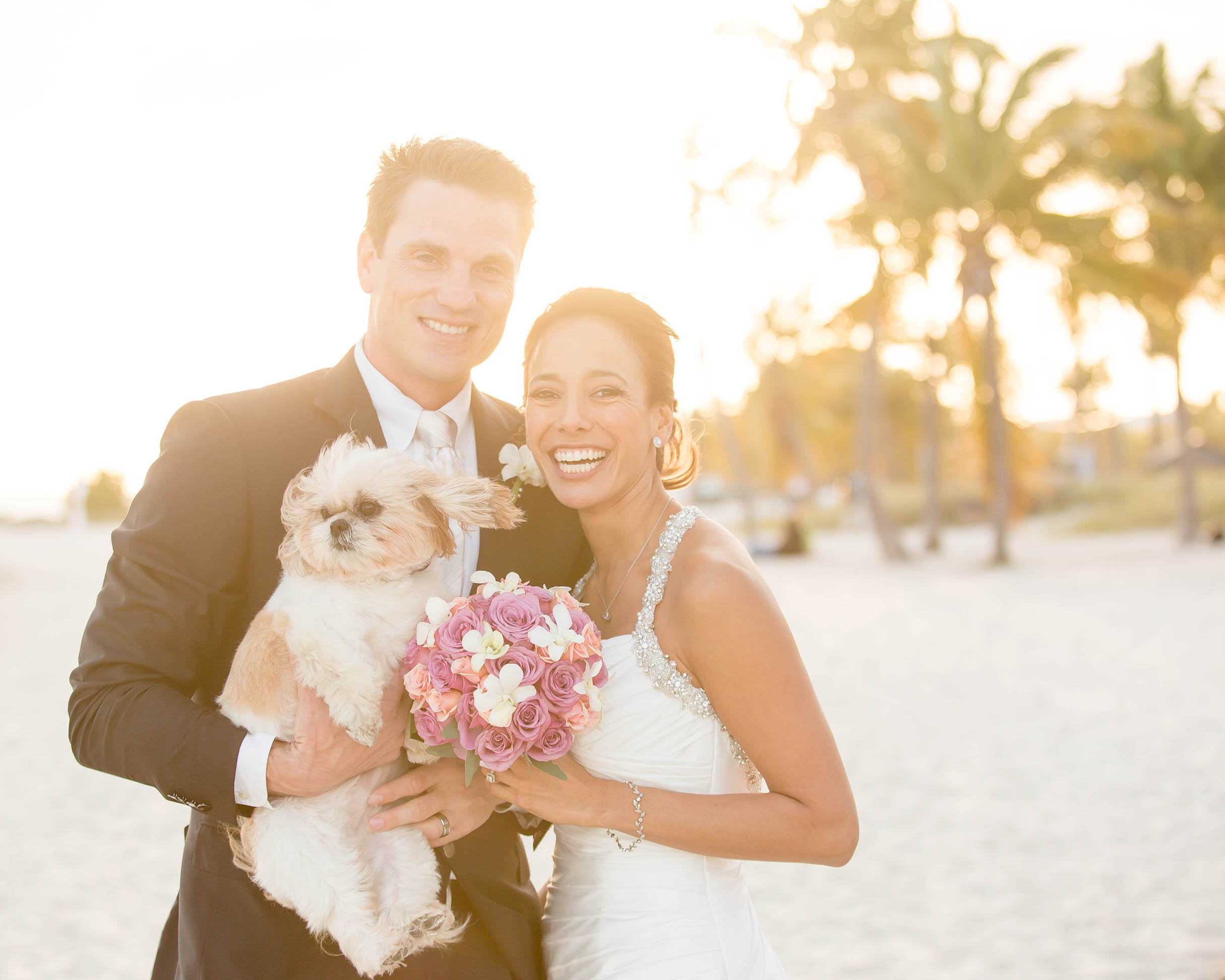 dogs_in_weddings_tiny_house_photo.jpg