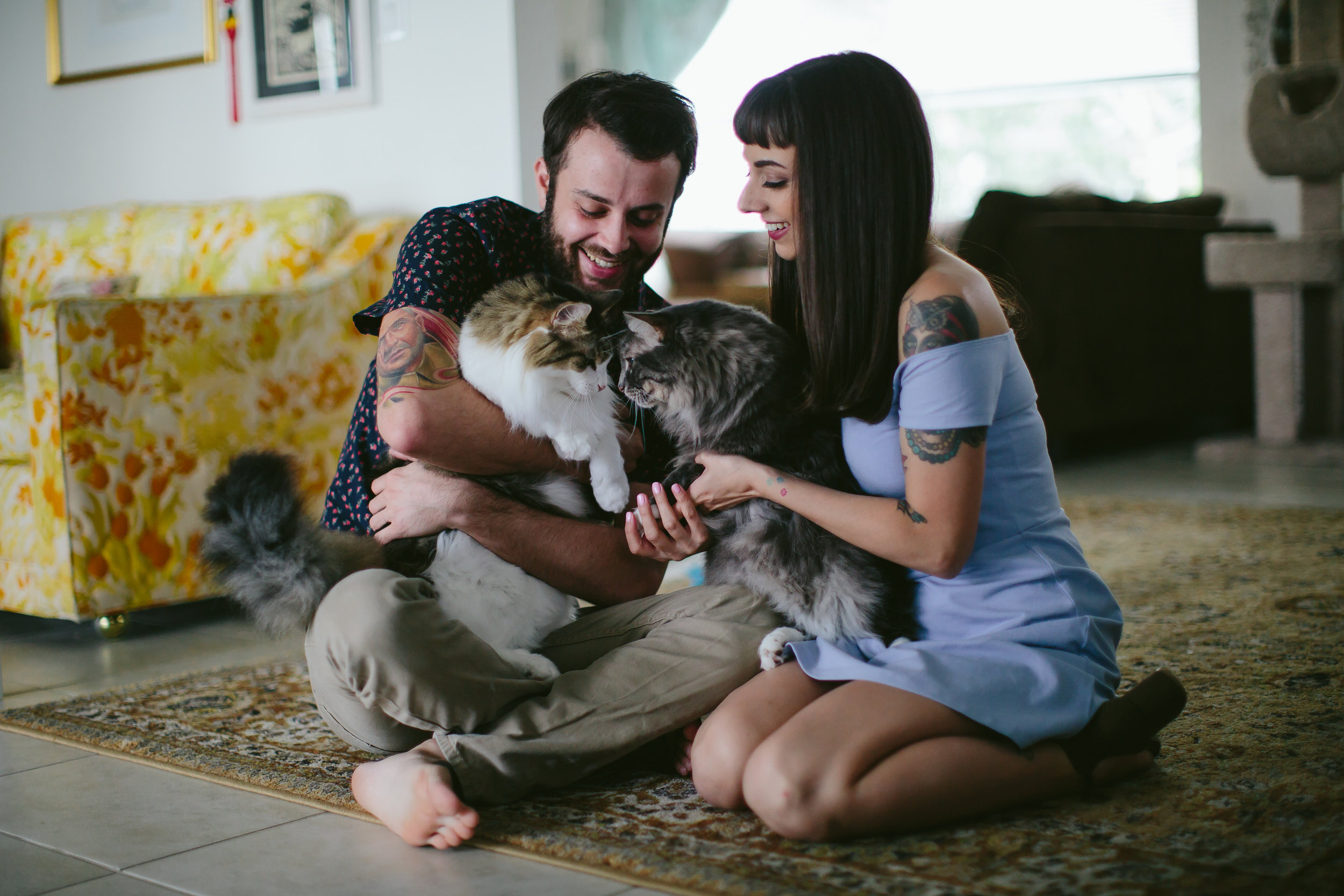 engagement-session-home-cats.jpg