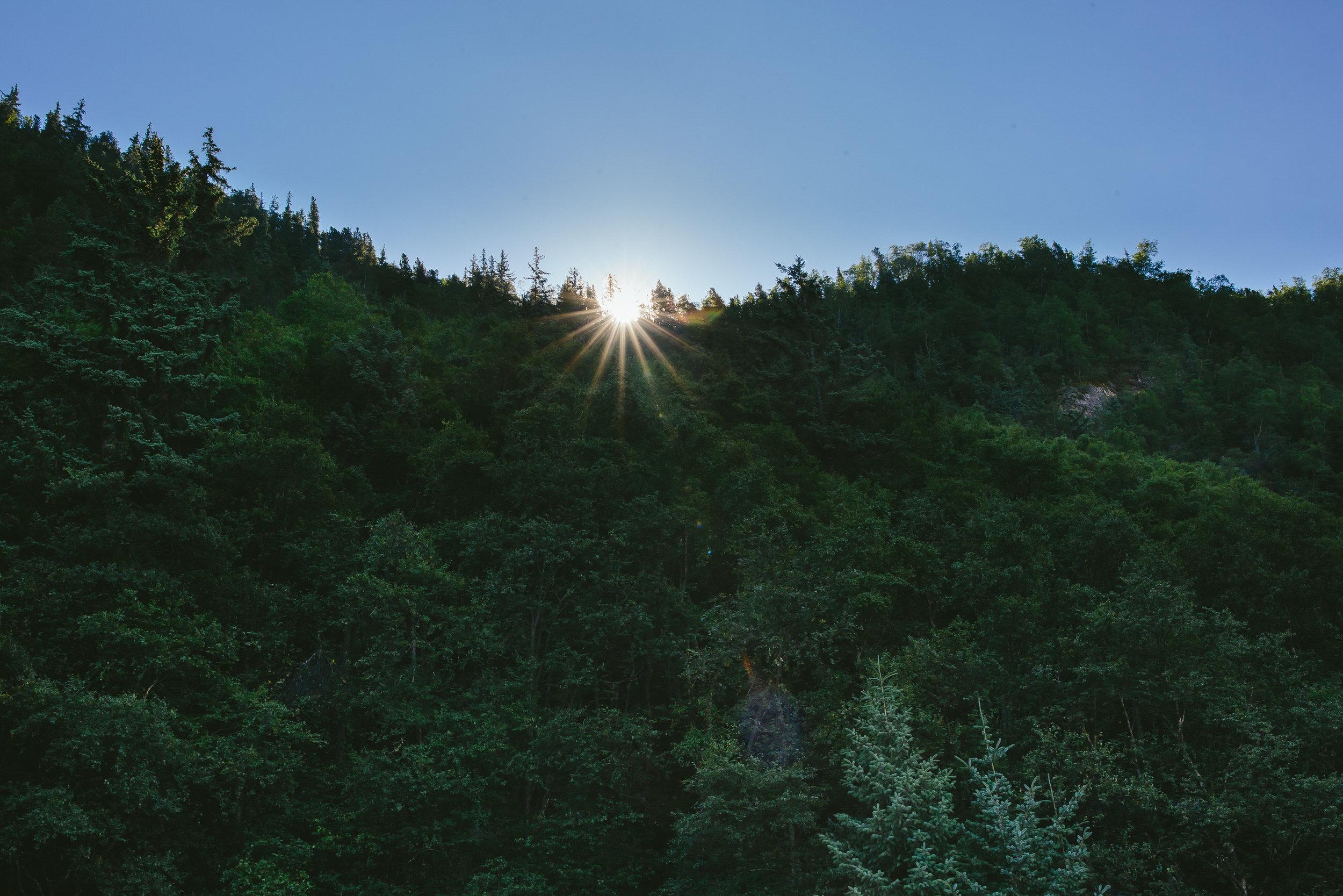 skagway_alaska_sun_forest_travel_tiny_house_photo_vacation-1.jpg