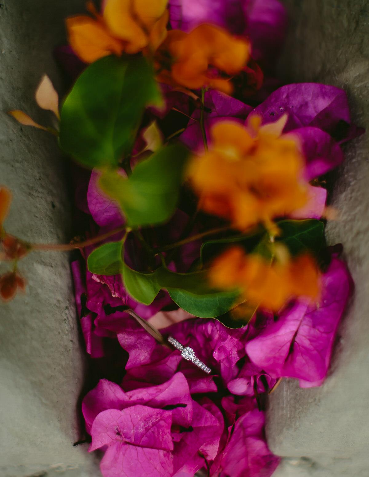 engagement-rings-colorful-flowers-tiny-house-photo-destination-wedding-photographer.jpg