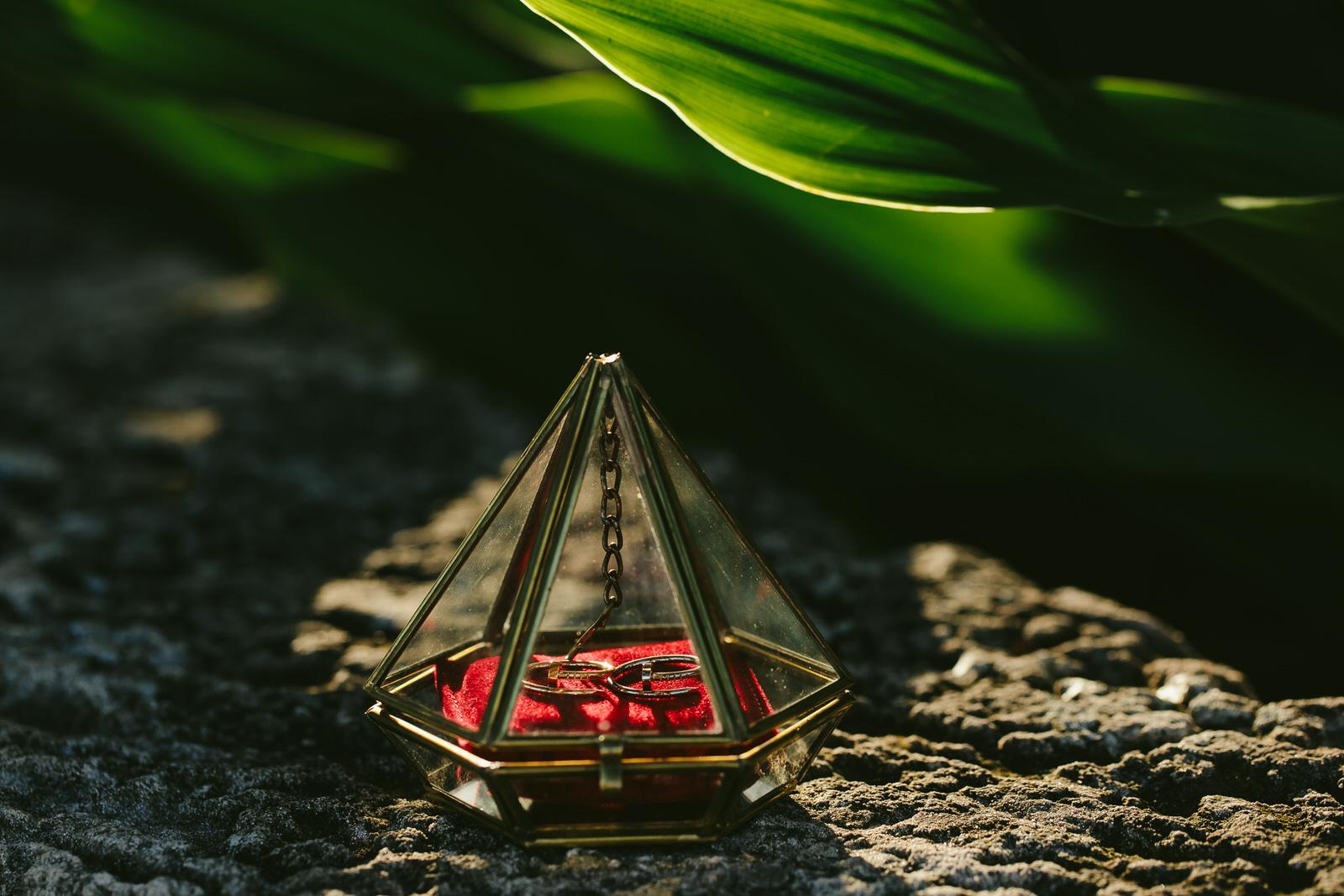 vizcaya_elopement_intimate_wedding_rings-6.jpg