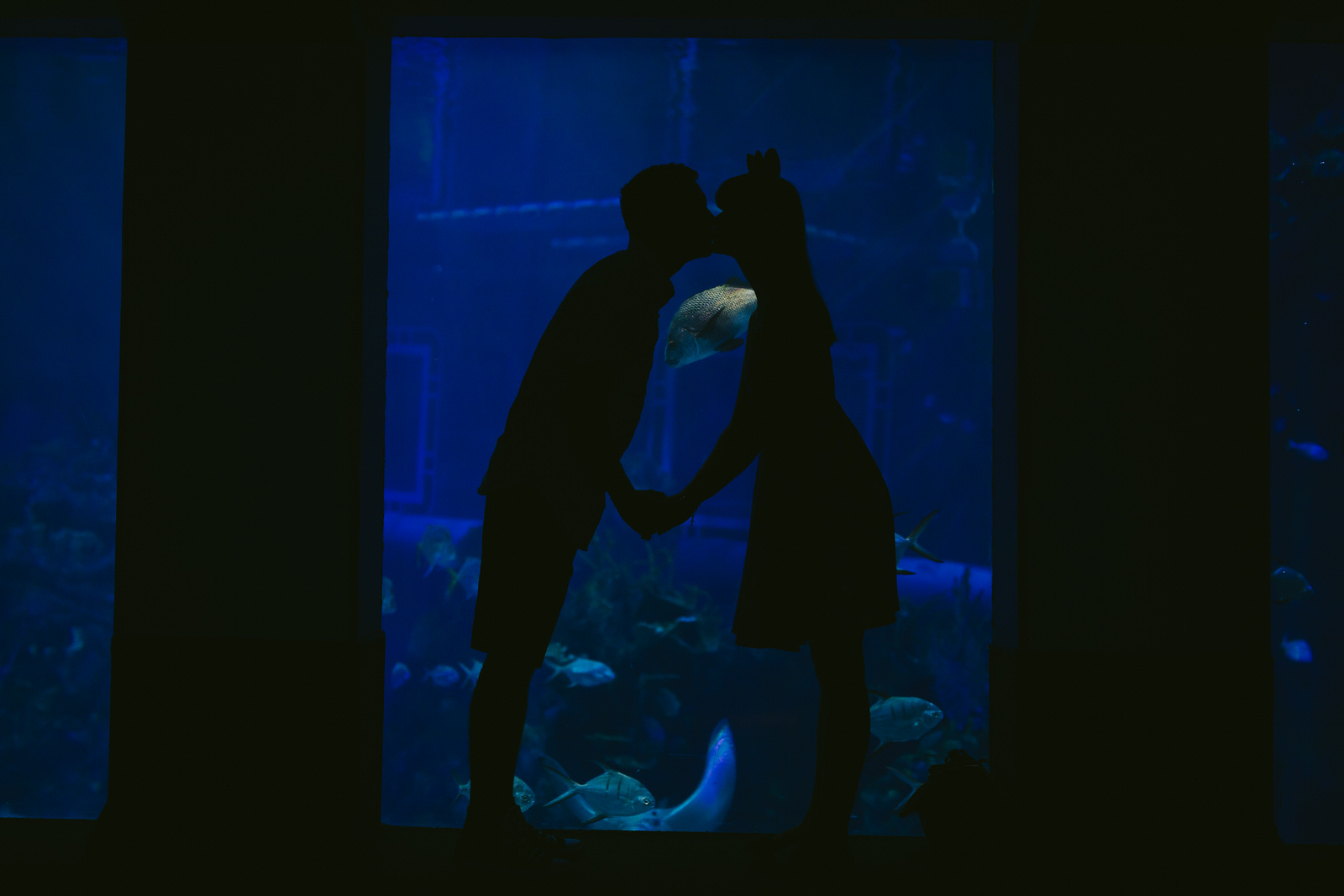 epcot-engagement-session-tiny-house-photo-aquarium-fun-1.jpg