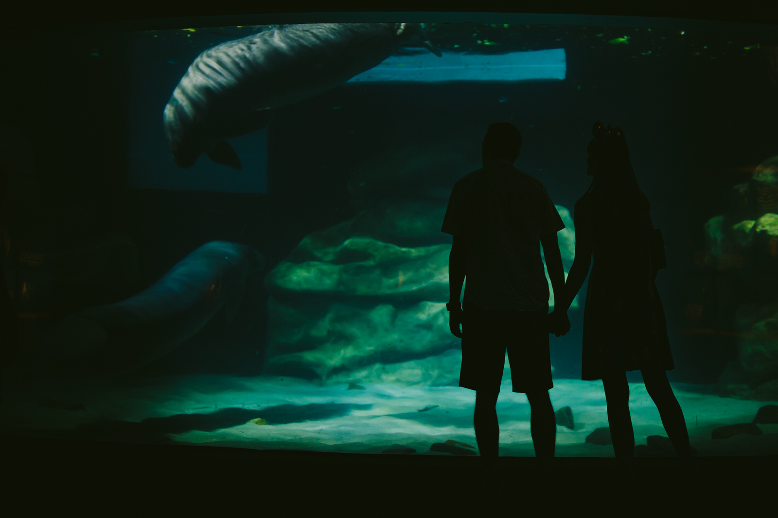 manatee-orlando-engagement-session-epcot-day-in-the-life.jpg