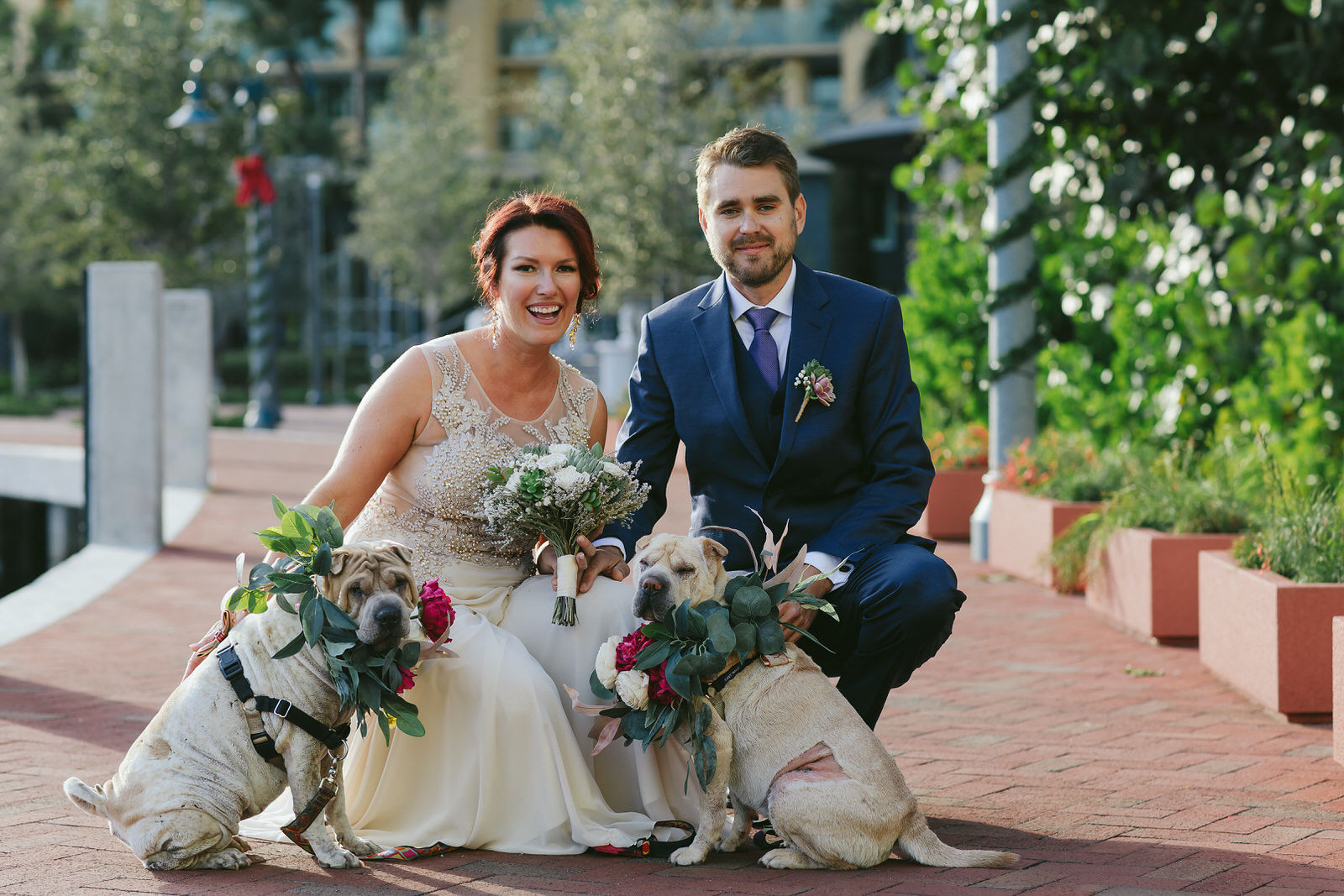 cute bride and groom sitting with dogs for a portrait in downtown fort lauderdale. photography by tiny house photo