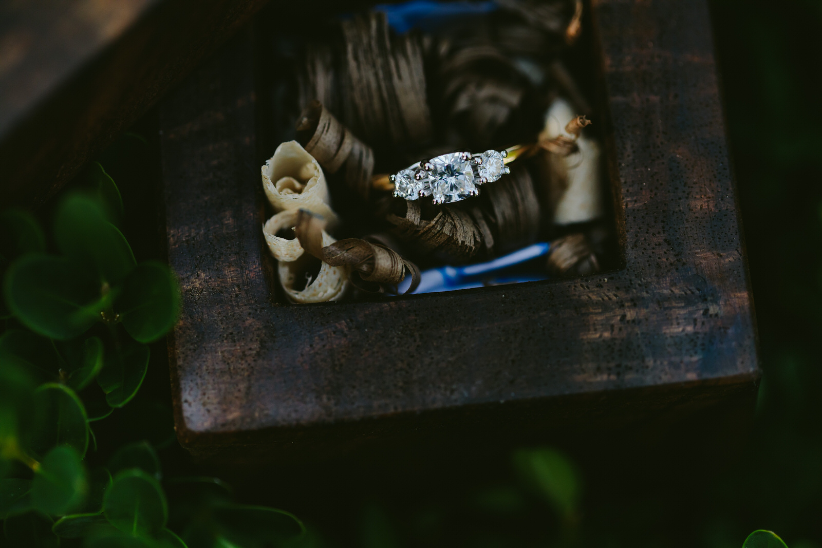 popped_the_question_proposal_photography_ring_tiny_house_photo.jpg
