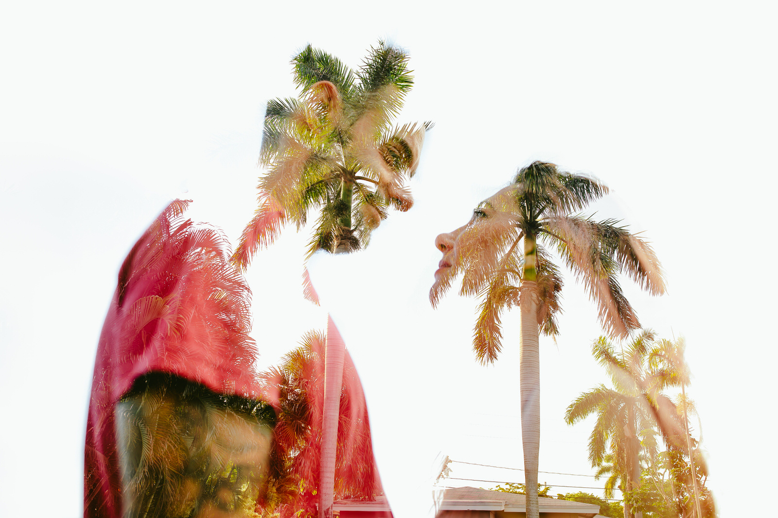 engagement-session-fort-lauderdale-day-in-the-life-tiny-house-photo-palm-tree-double-exposure-1.jpg
