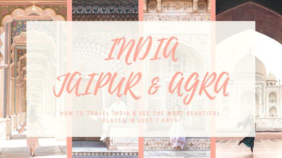 INDIA JAIPUR & AGRA.png