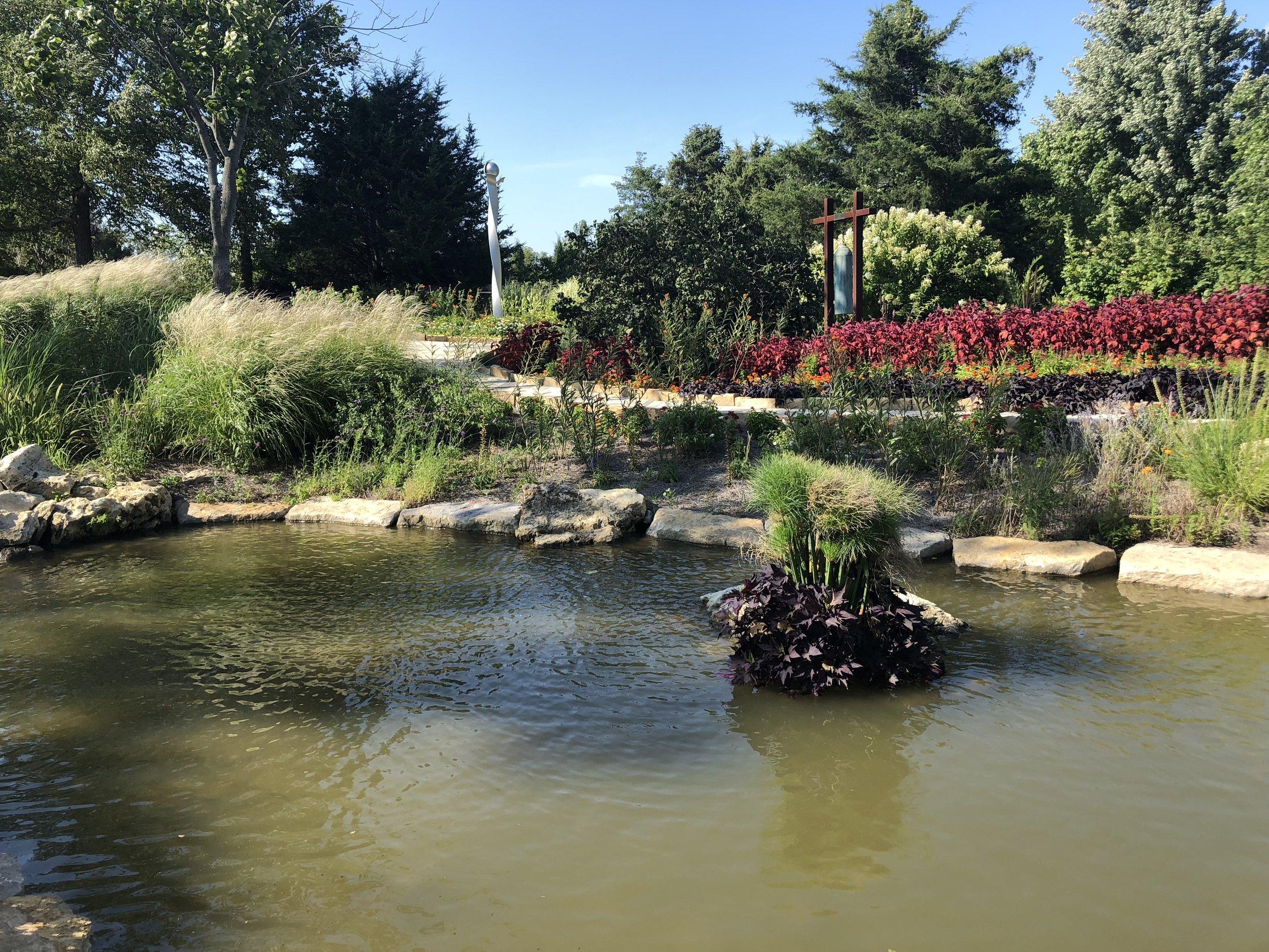 Photo taken by Samantha McHenry, Kansas City Arboretum, August 2018.