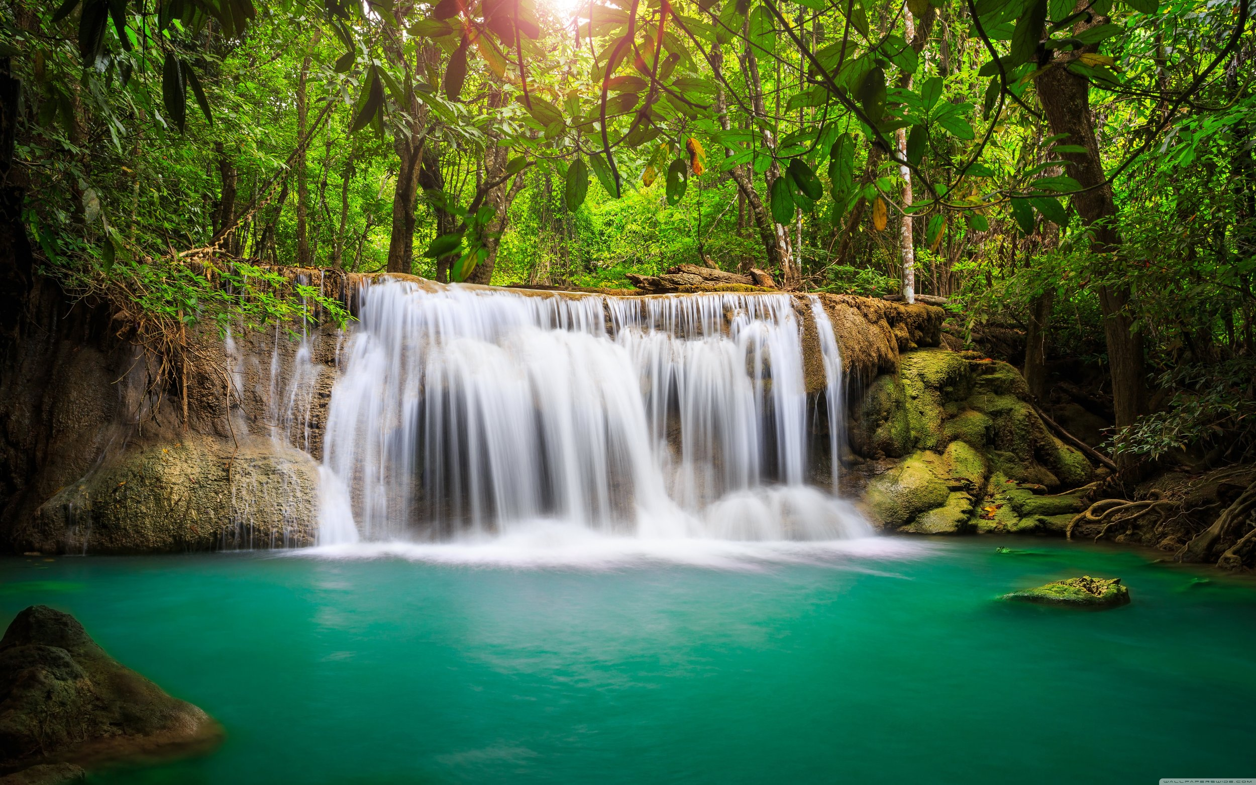 rainforest_waterfall-wallpaper-5120x3200.jpg