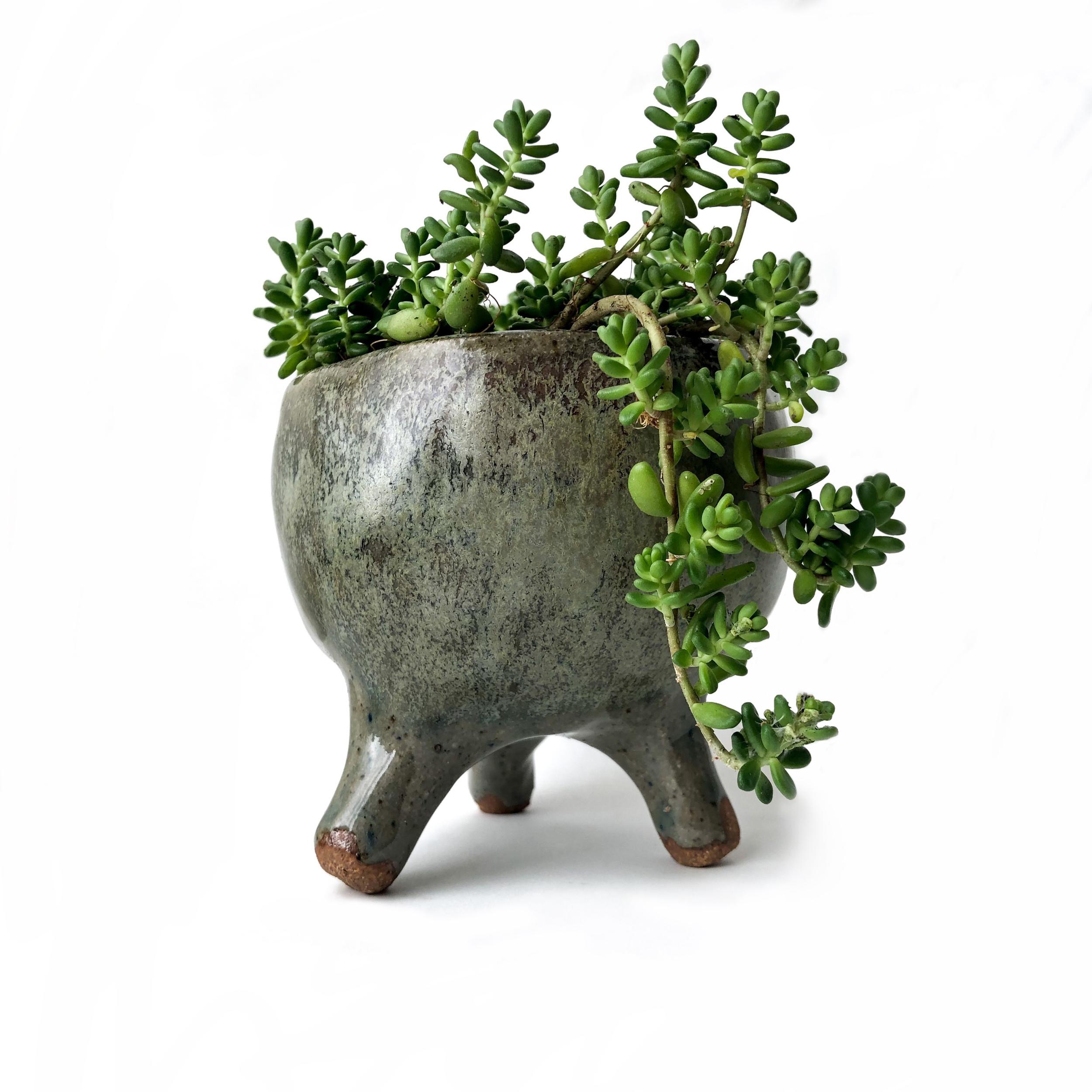 jordan_kushins_ceramic_tri_planter.png