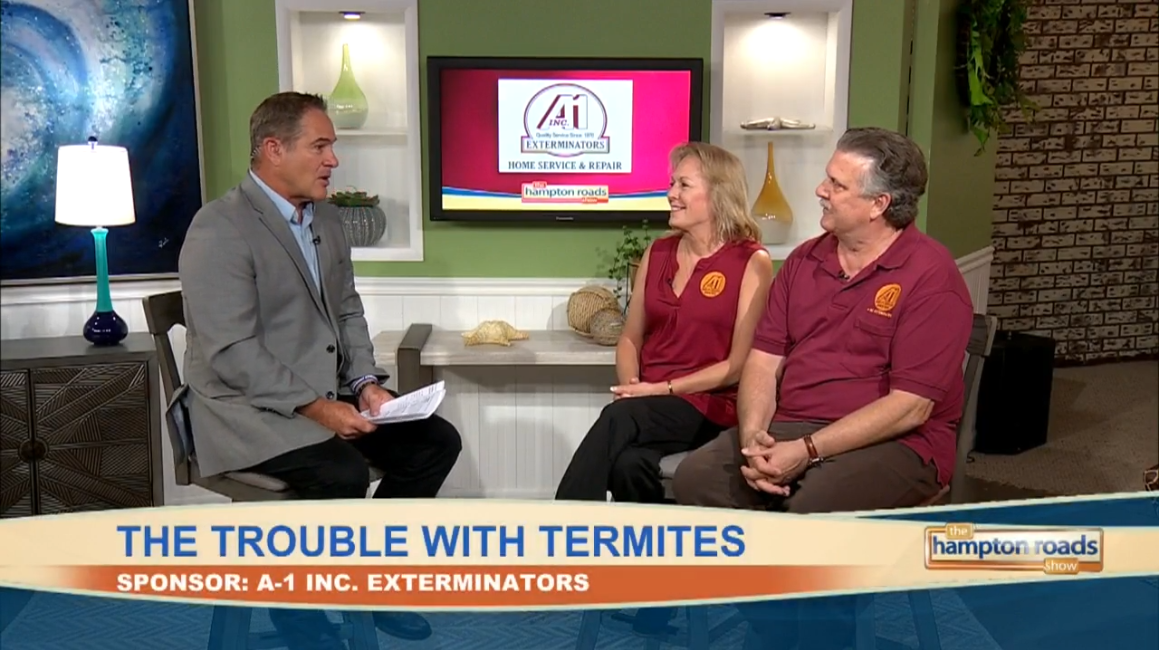 Watch us talk about termites and pests on the Hampton Roads Show! -