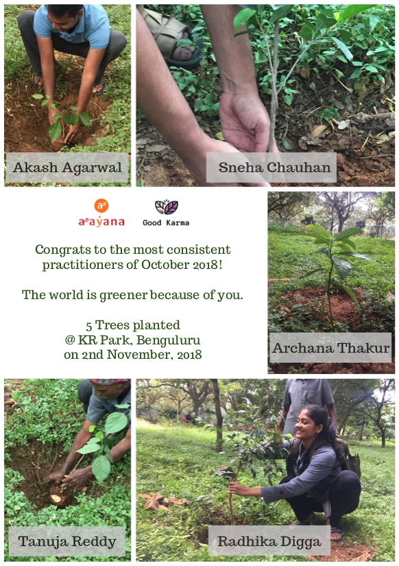 Poster_-_Aayana_-_Tree_planting_-_Nov_2_2018.png