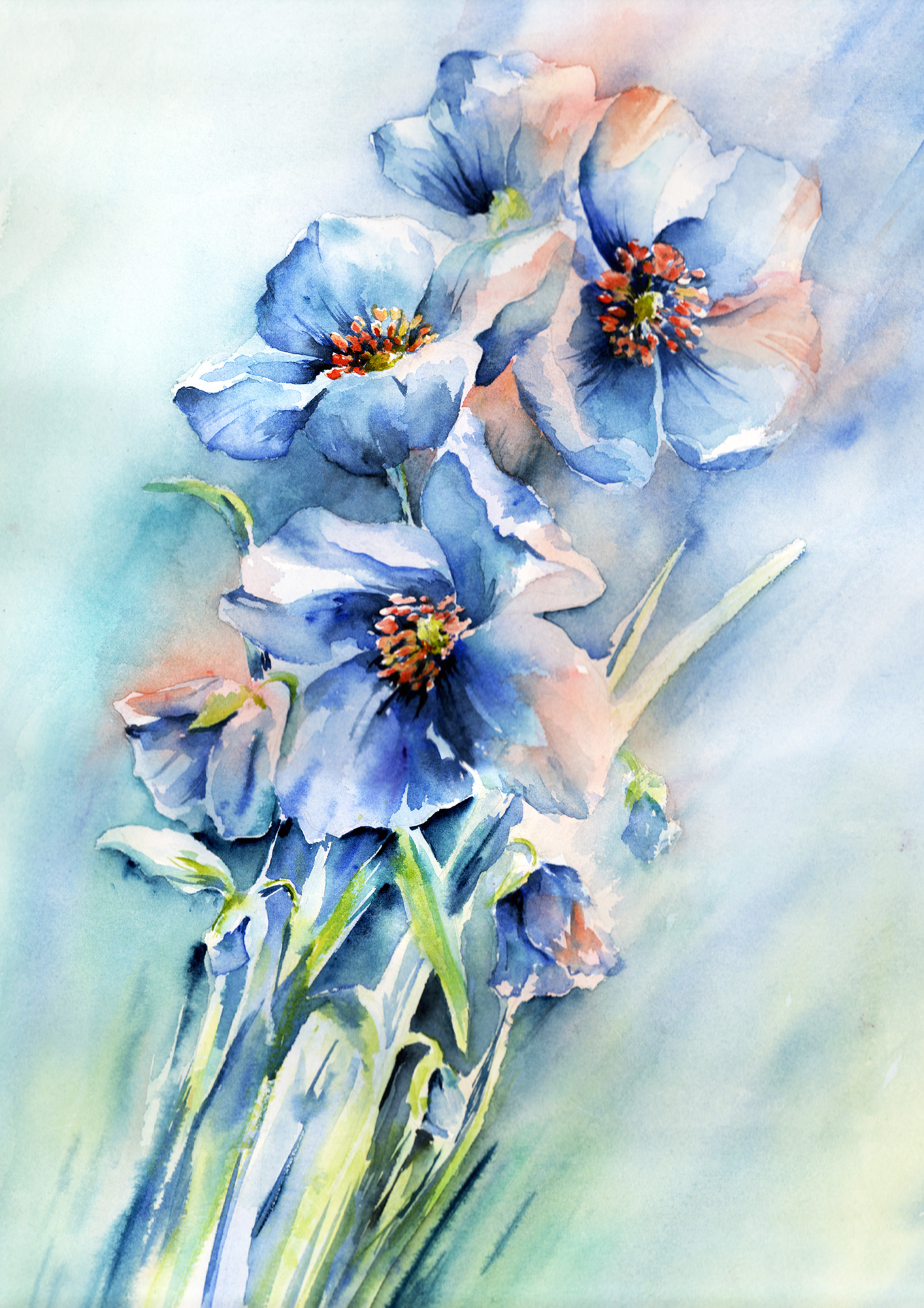Nicky Hunter, Blue Poppy, watercolour painting