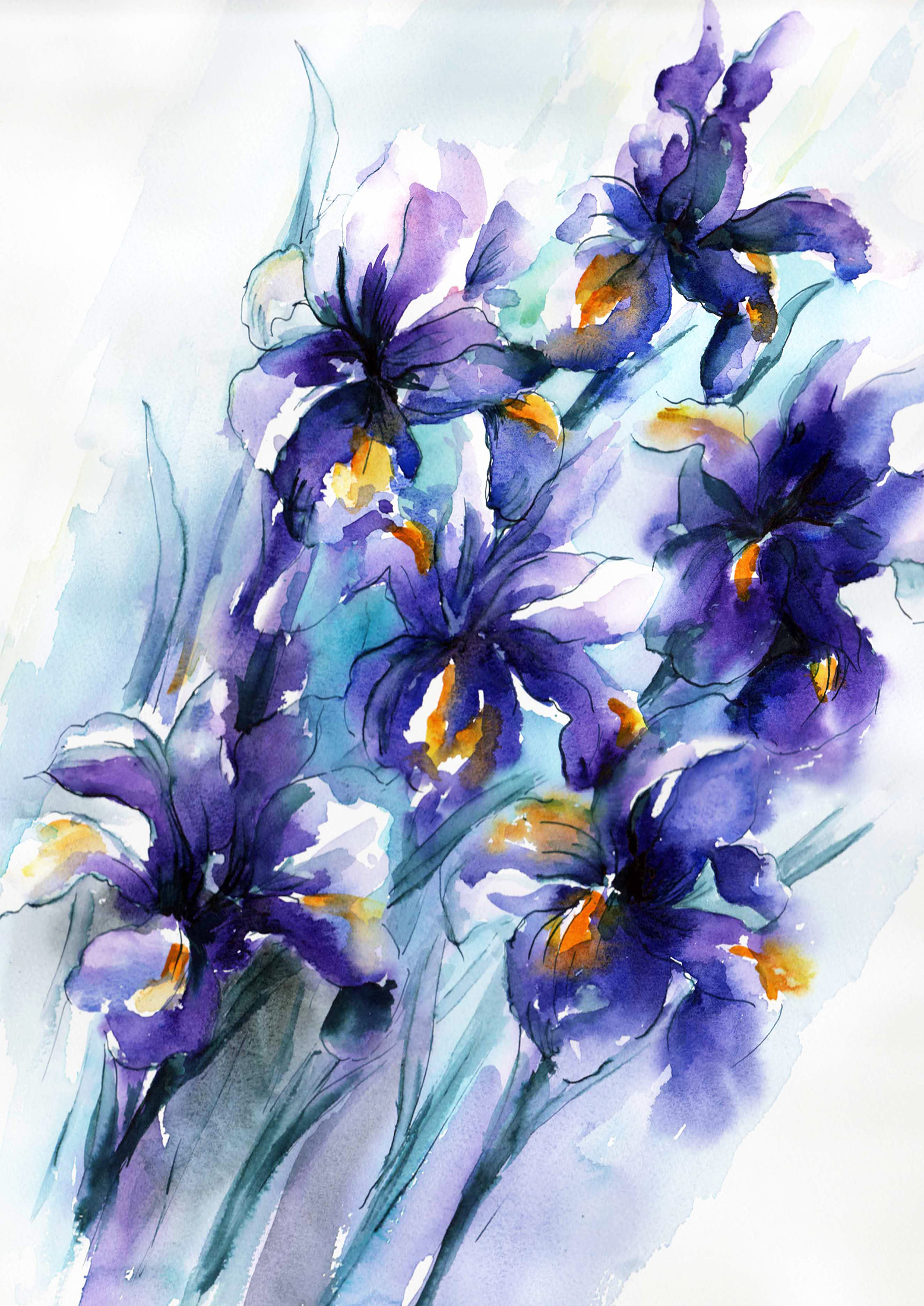 Nicky Hunter, Vibrant Iris, watercolour painting
