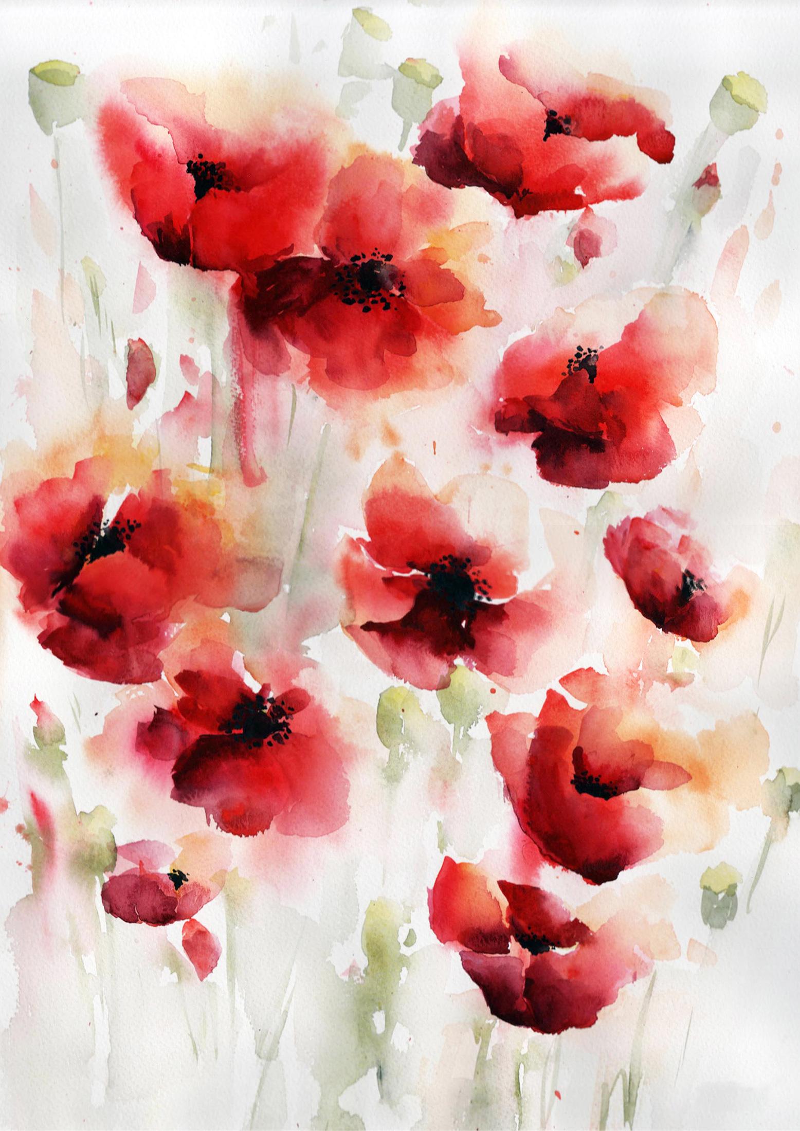 Poppy-Meadow-Nicky-Hunter.jpg