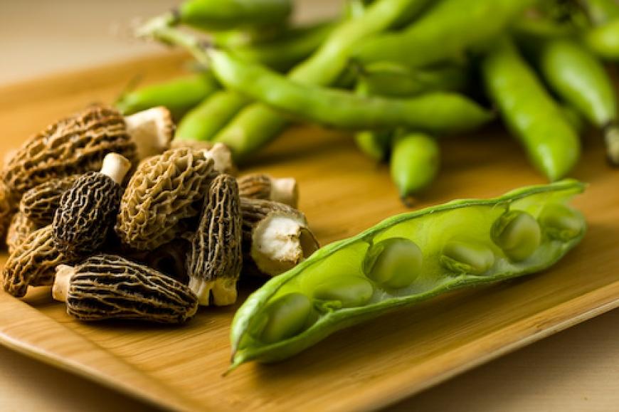 Fava Bean, Red Potato and Mushroom Compote.jpg