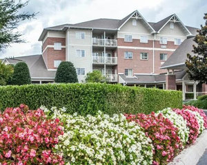 Lodging - Mainstay Suites410 Pine Mountain RdPigeon Forge, TN 37863Hotel Website