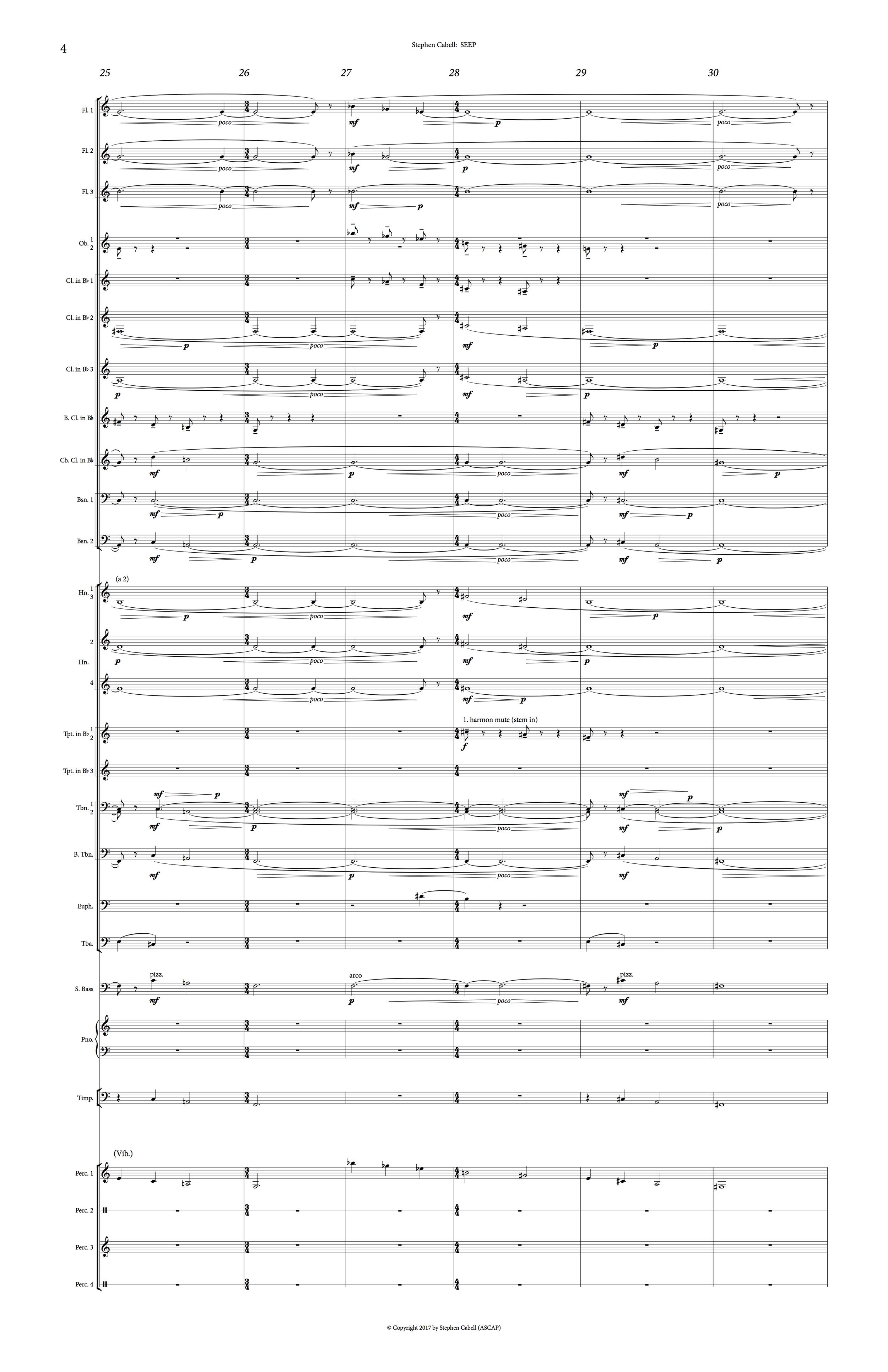 SEEP Full Score 20170227_0004.png