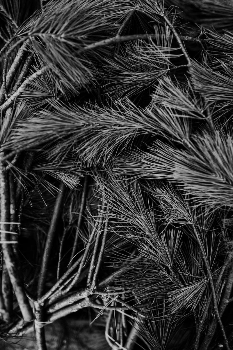 robyn-bessenger-photography-125.jpg