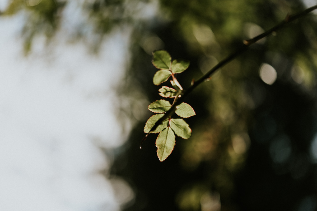 robyn-bessenger-photography-12.jpg