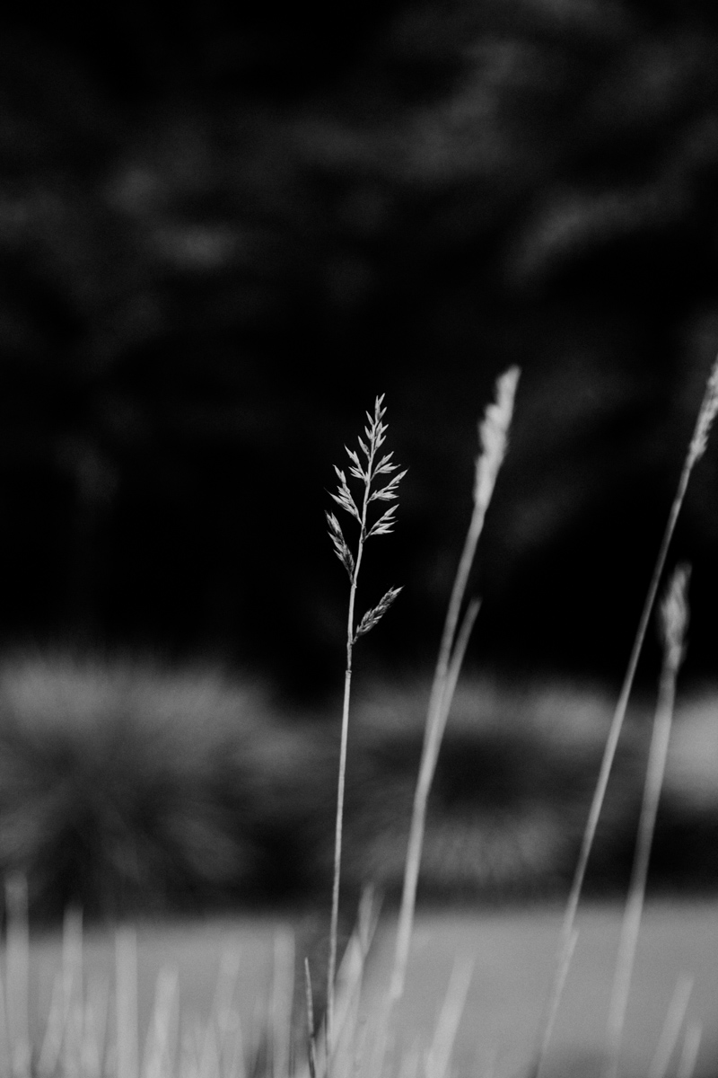 robyn-bessenger-photography-84.jpg