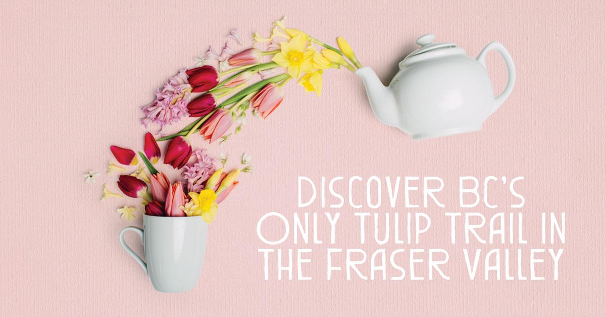 FVT_Spring_Ads_Teapot&Cup_FB.jpg